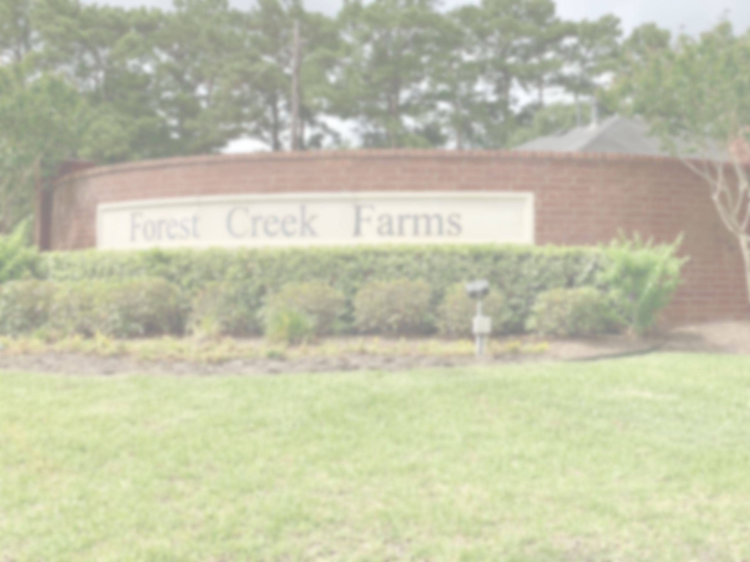 Forest Creek Farms
