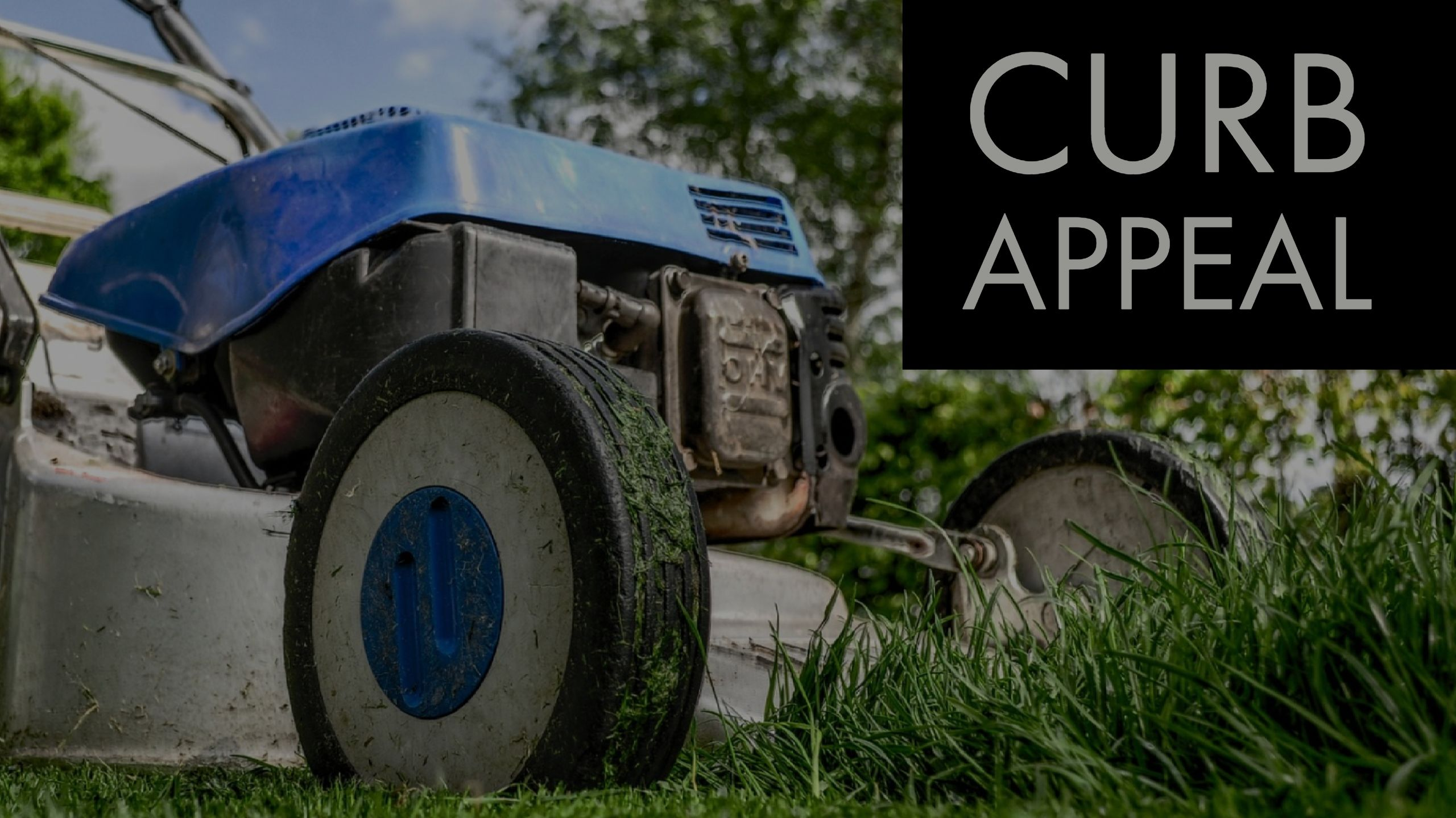 Curb Appeal with Grass Roots Lawn & Landscape