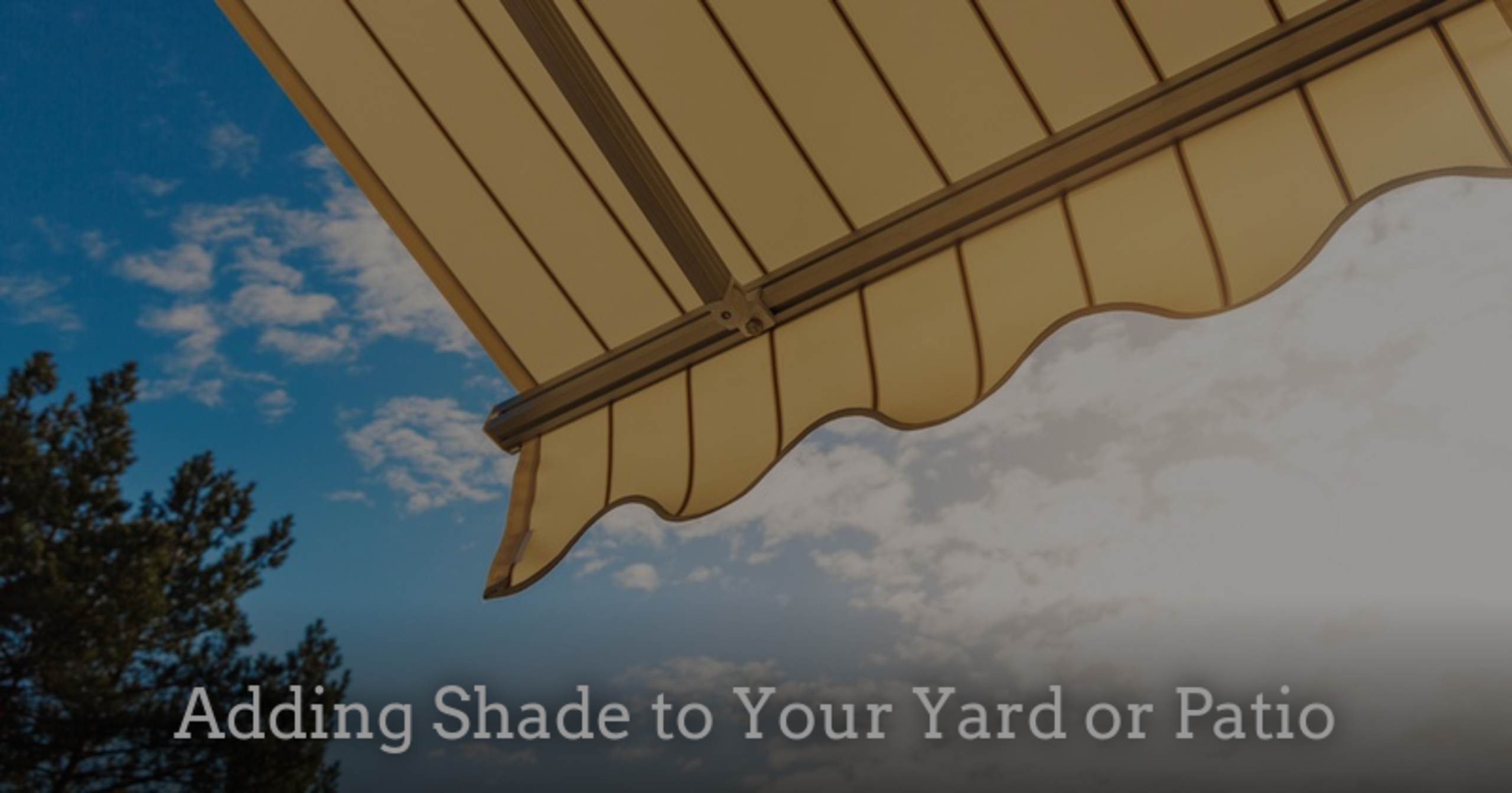 Adding Shade to Your Yard or Patio