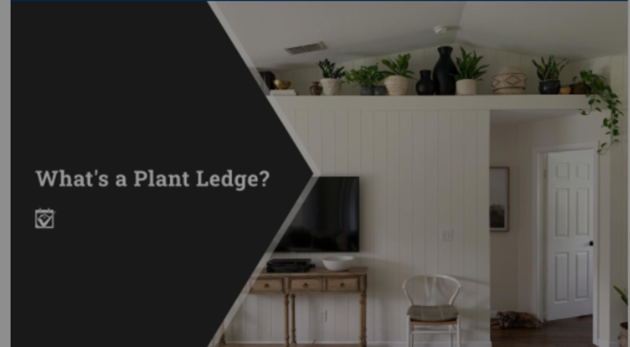 What's a Plant Ledge?