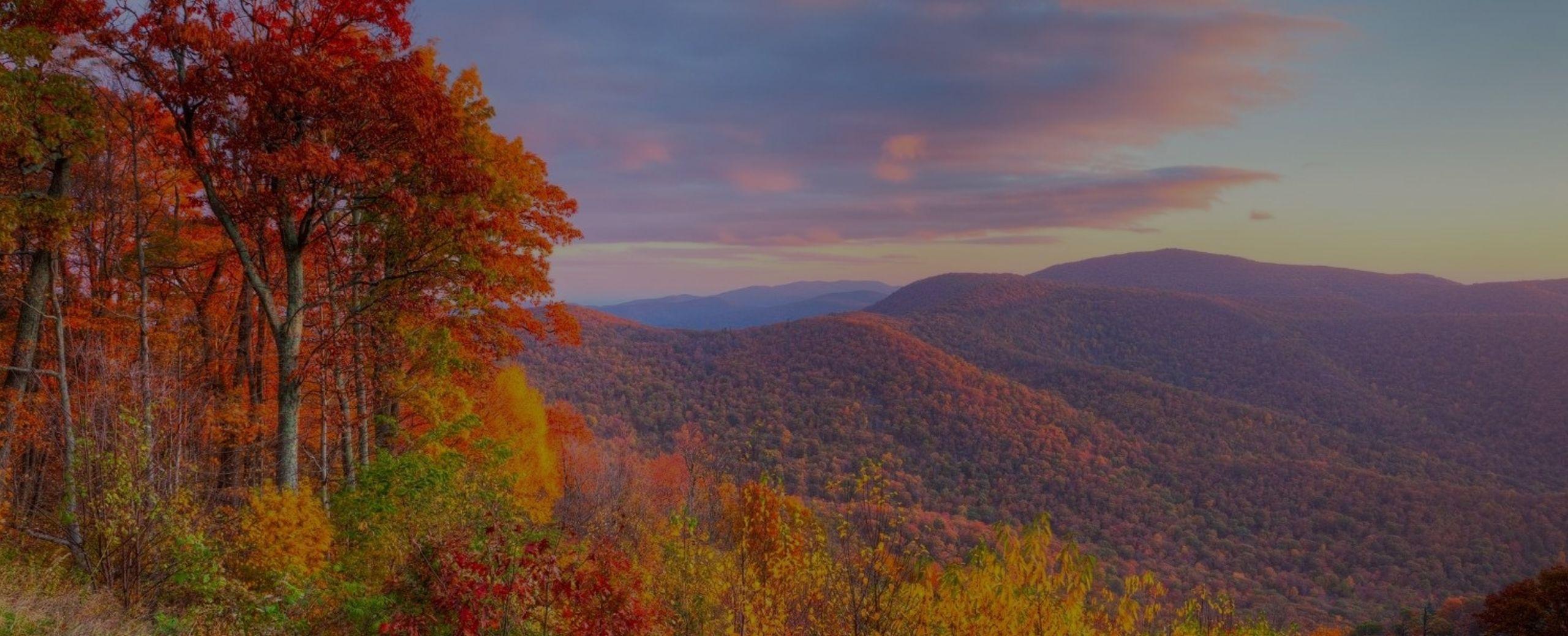 Fall Activities in Virginia