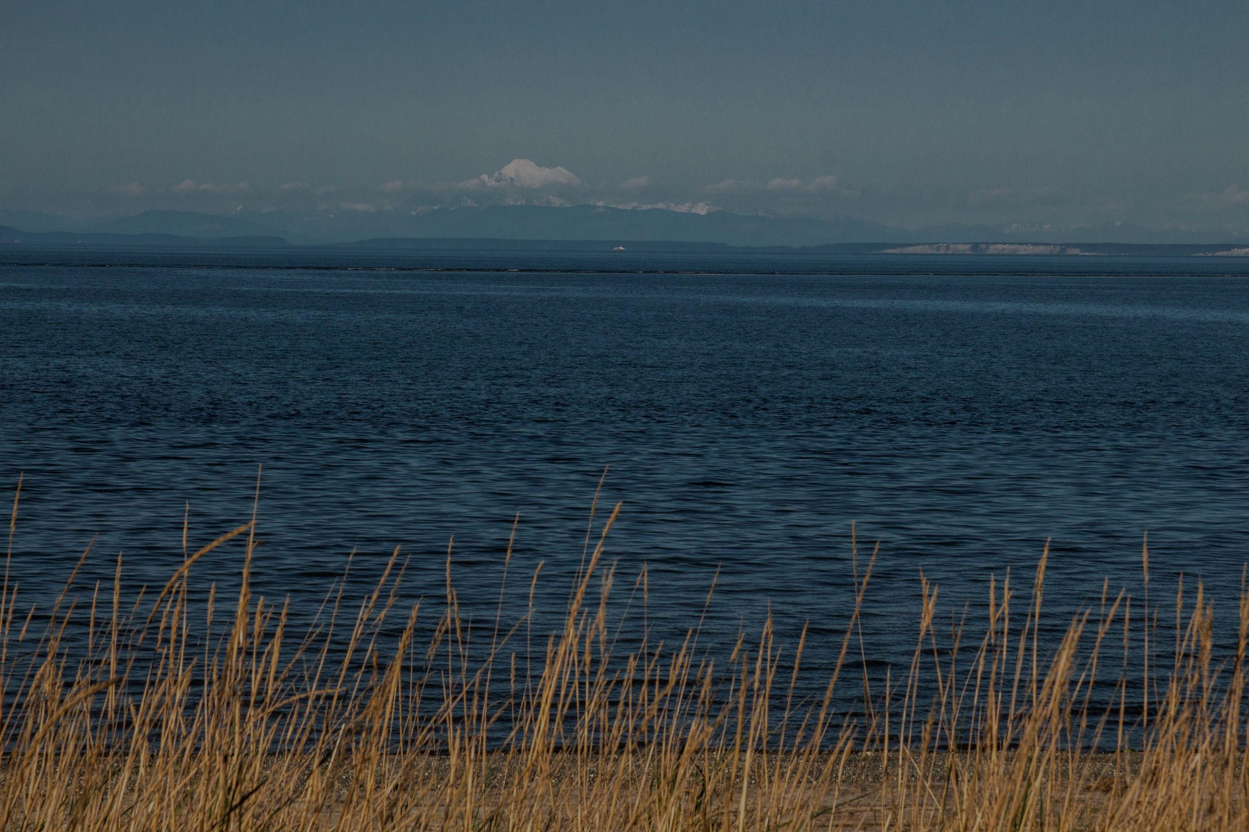 Seashore Serenity on the Olympic Peninsula