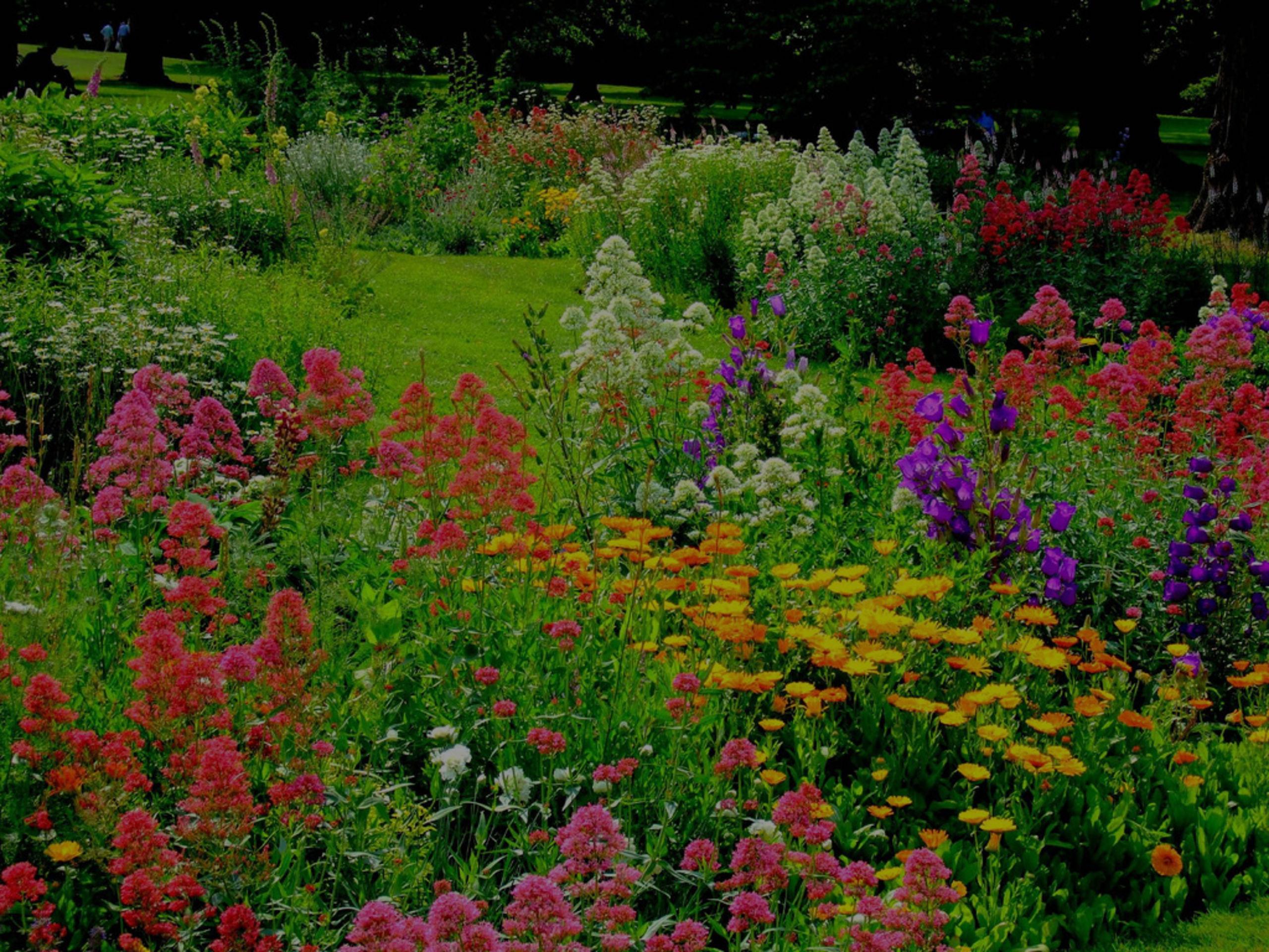 Year Round Garden Care