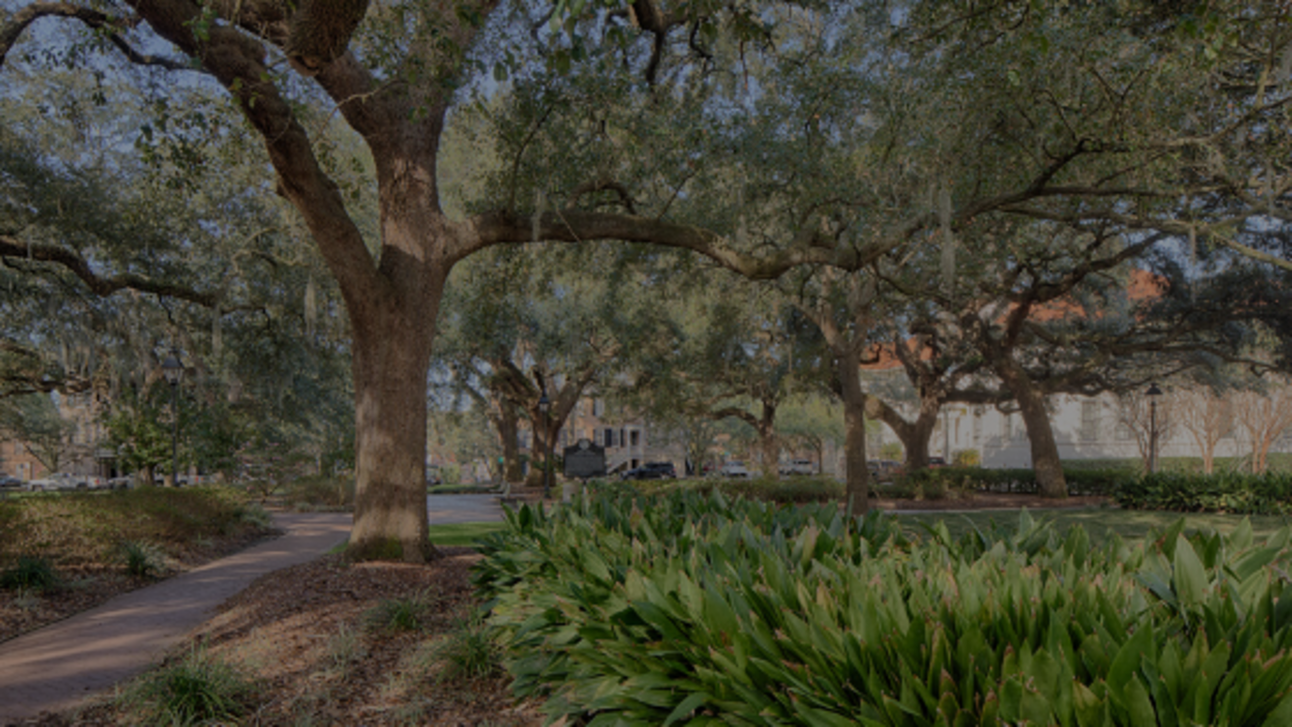 Savannah's Real Estate Industry Uses Technology, Social Distancing to Adjust to COVID-19 Changes