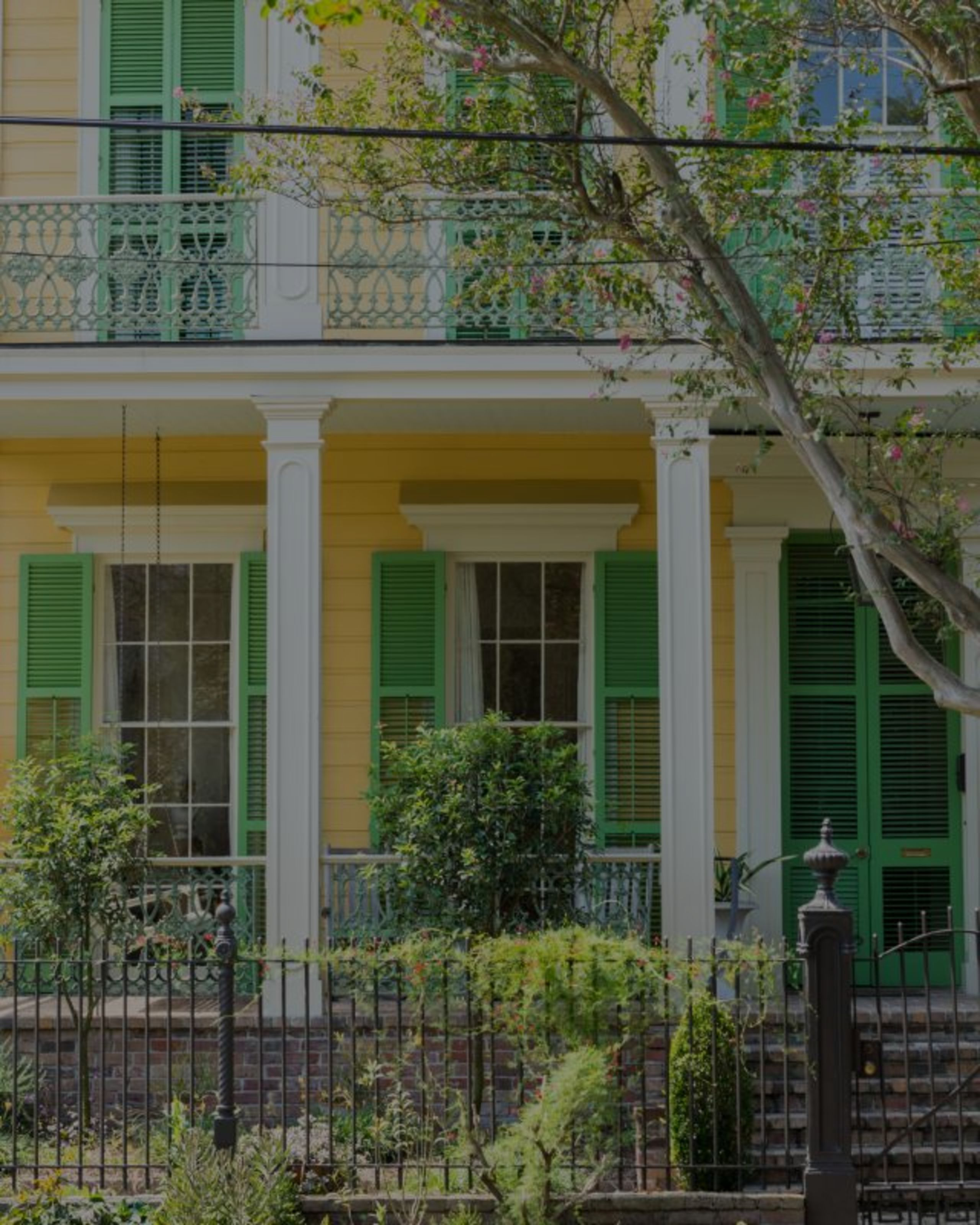 Buying in New Orleans: A Guide for Beginners