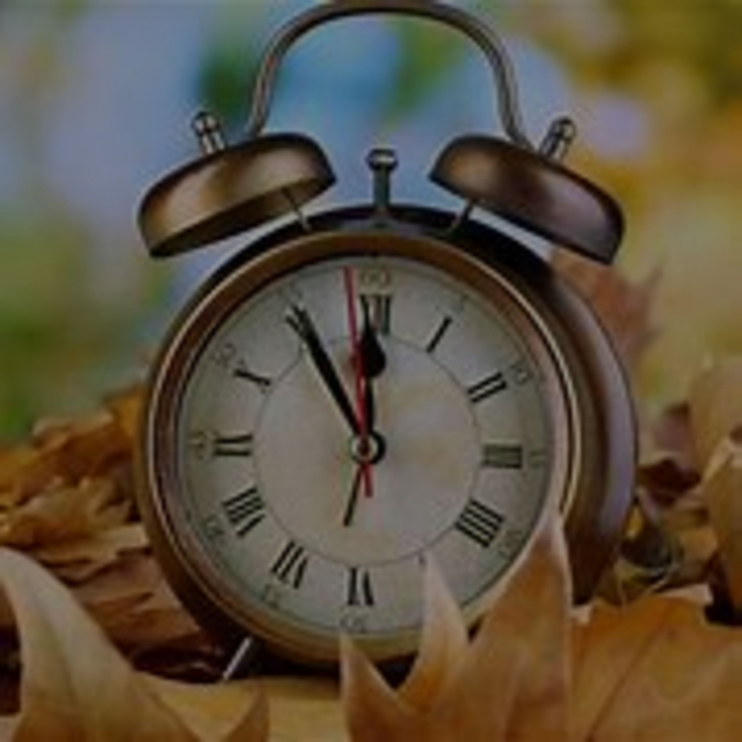 Spring Forward Is Not Just About The Clock