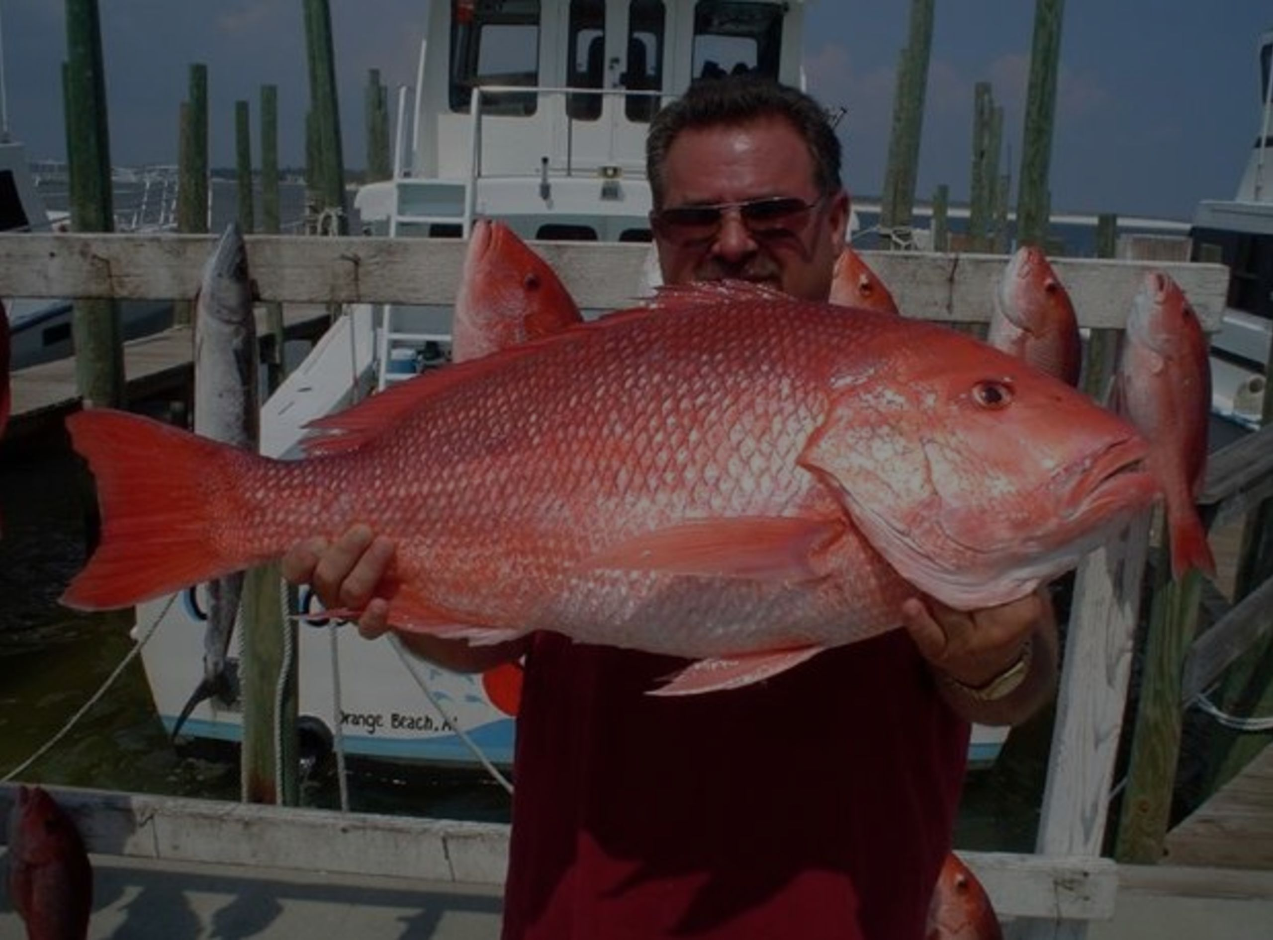 Fishing Boat Charters in Gulf Shores and Orange Beach
