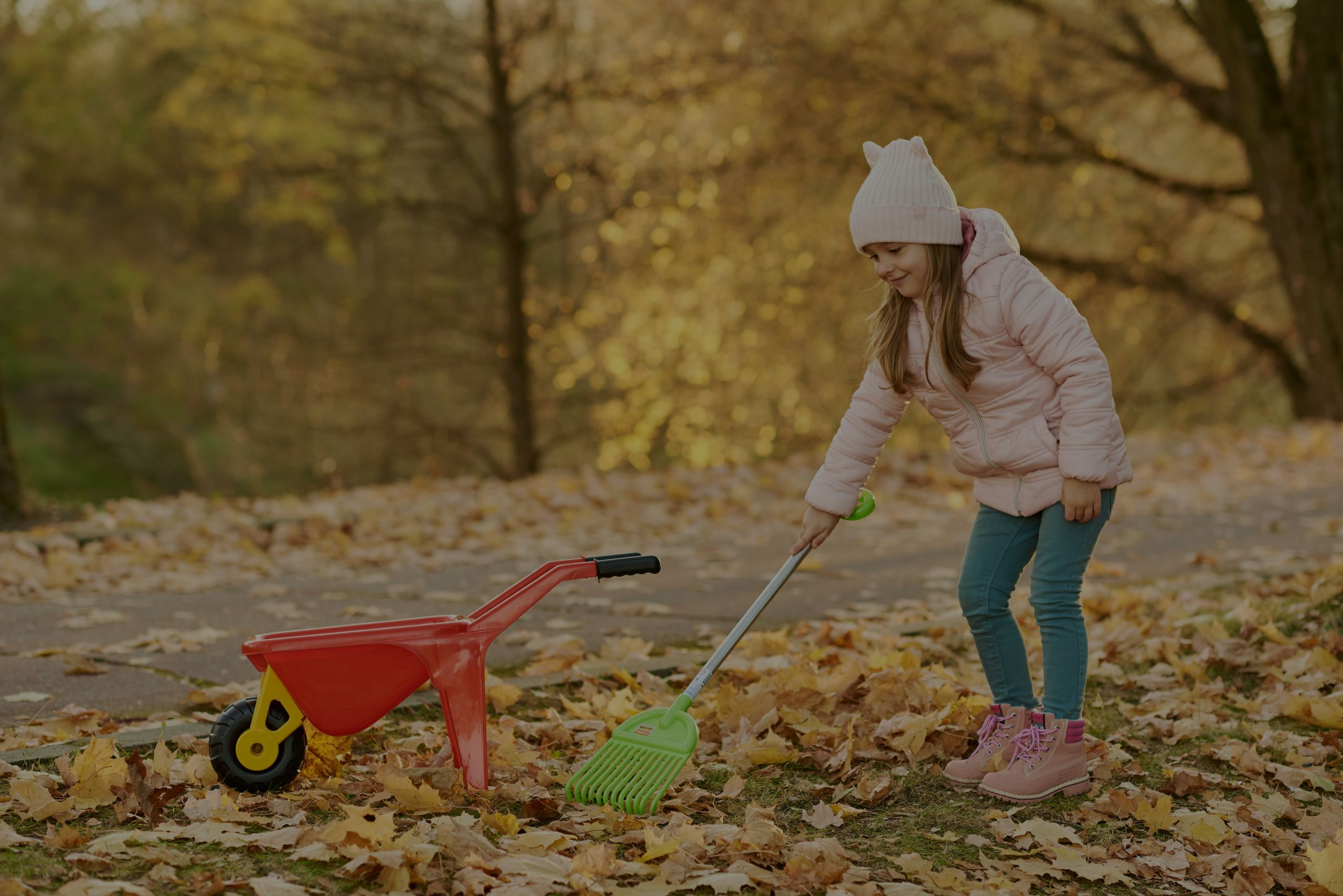 How to Keep Your Yard Leaf Free During Fall