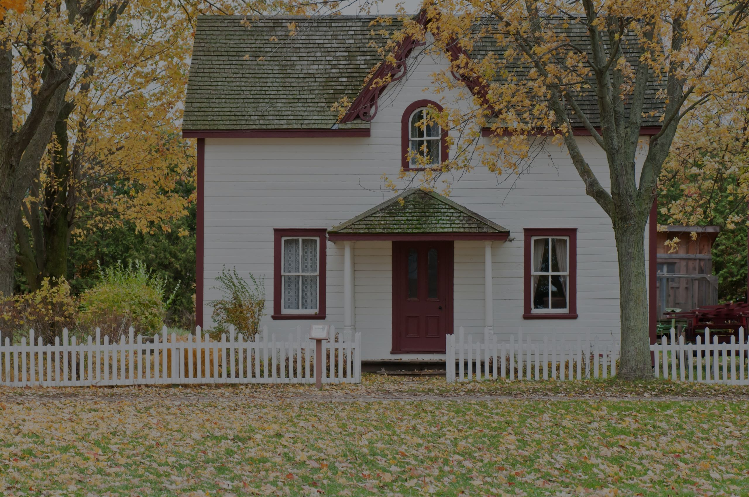3 Considerations for Choosing the Right Tree for Your Property