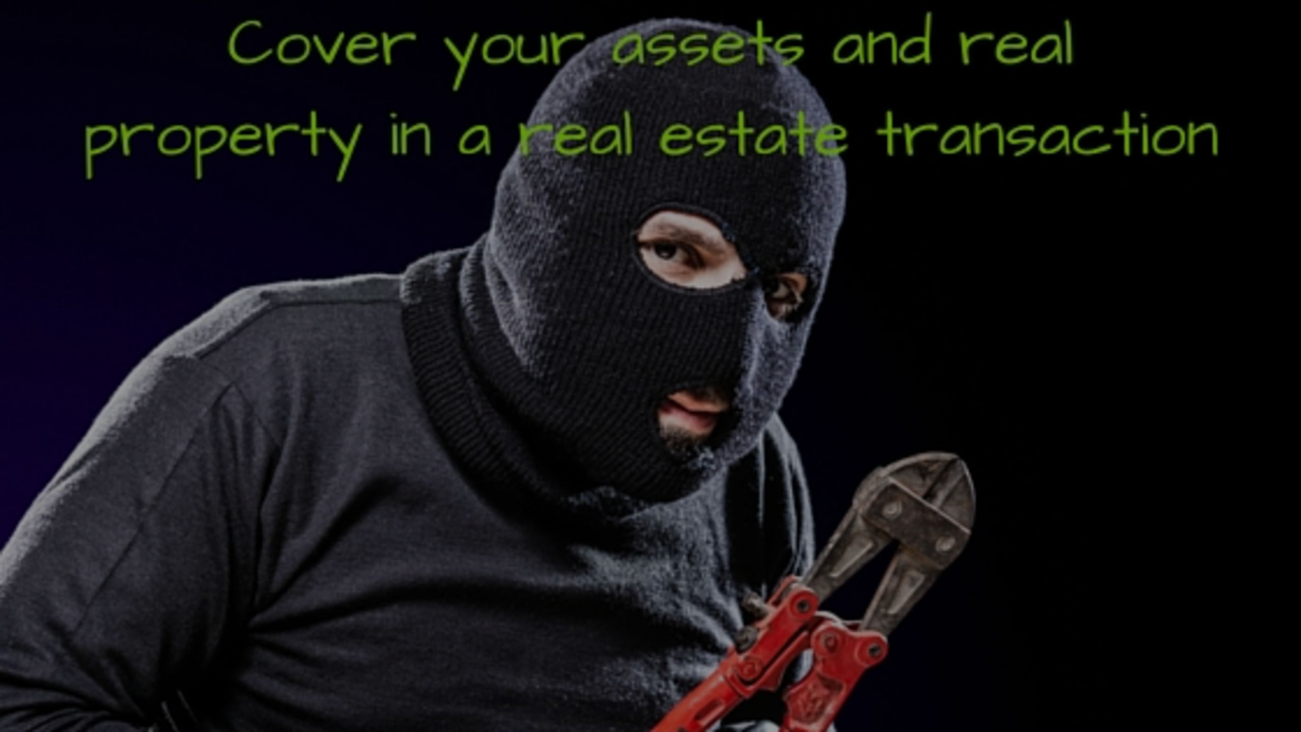 Real Estate Sales Fraud