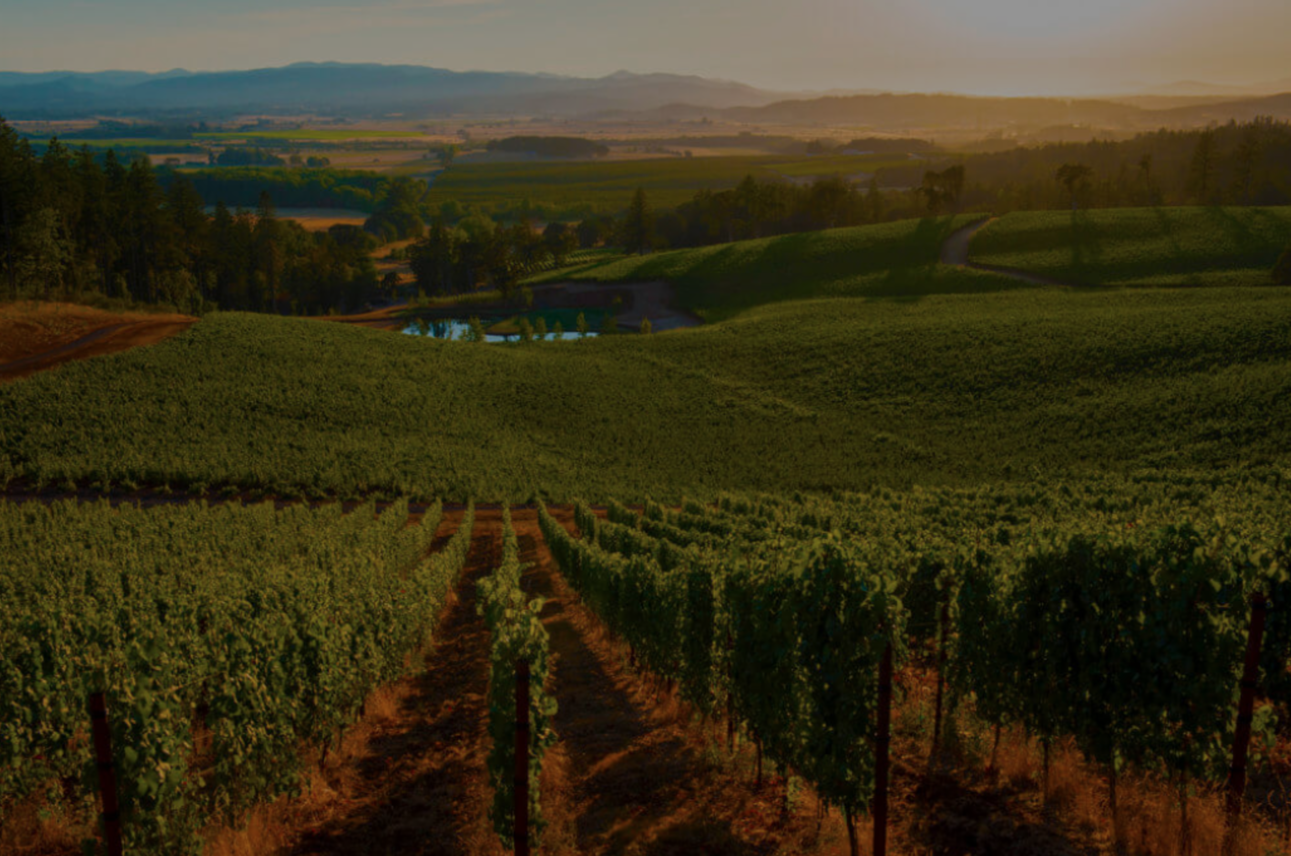 A Guide To Understanding Rural Property in Sonoma County