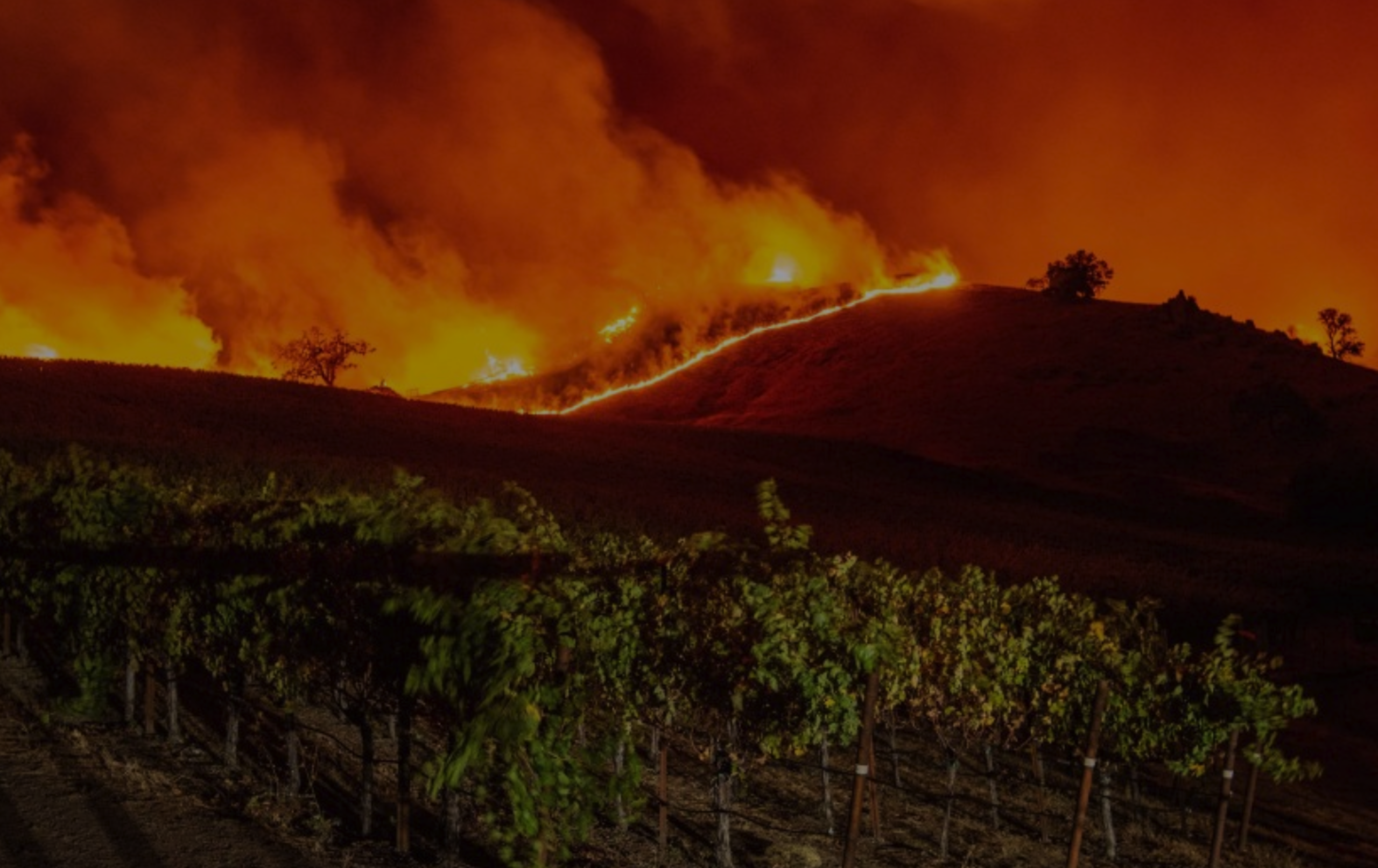 Have Insurance Costs In Sonoma County Increased After The Fires?