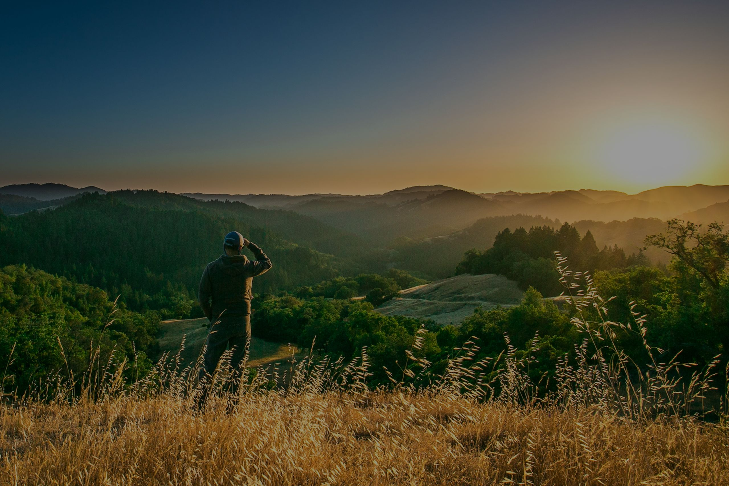 What Are The Top Property Markets In Sonoma County?
