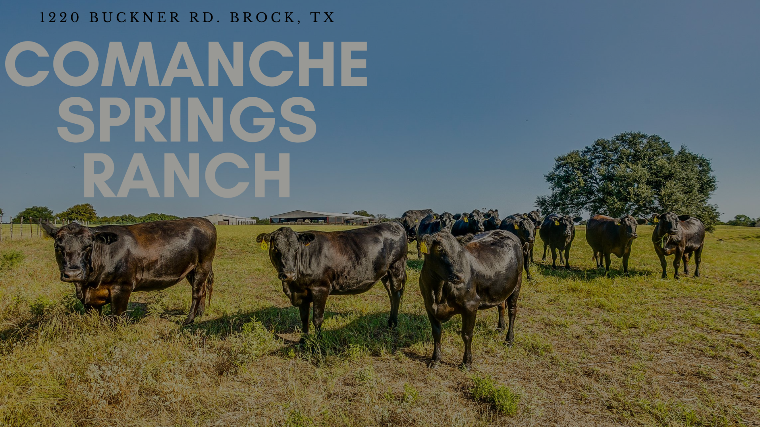 Comanche Springs Ranch – 1220 Buckner Rd. Brock, TX