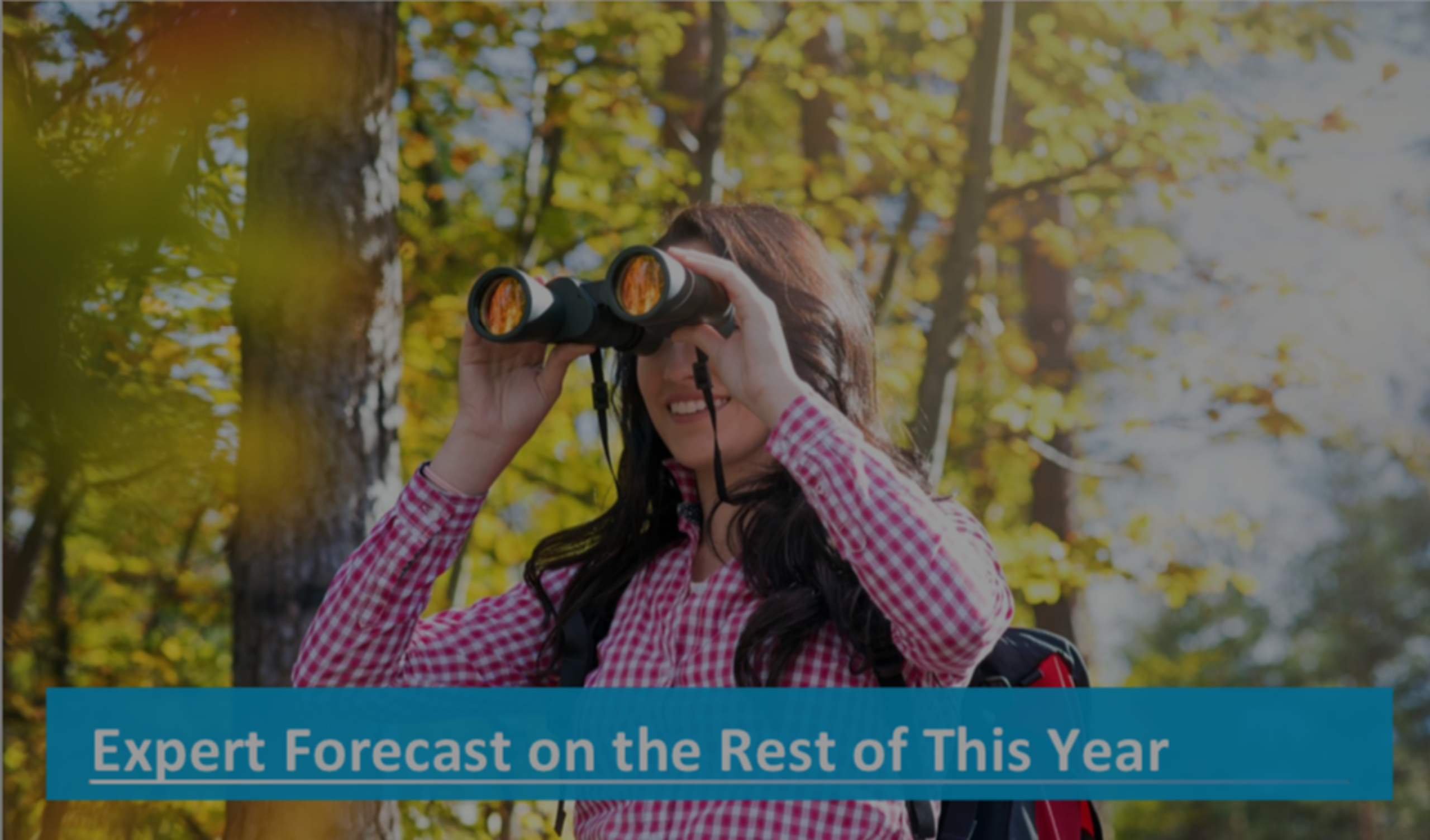 Expert Forecast on the Rest of This Year