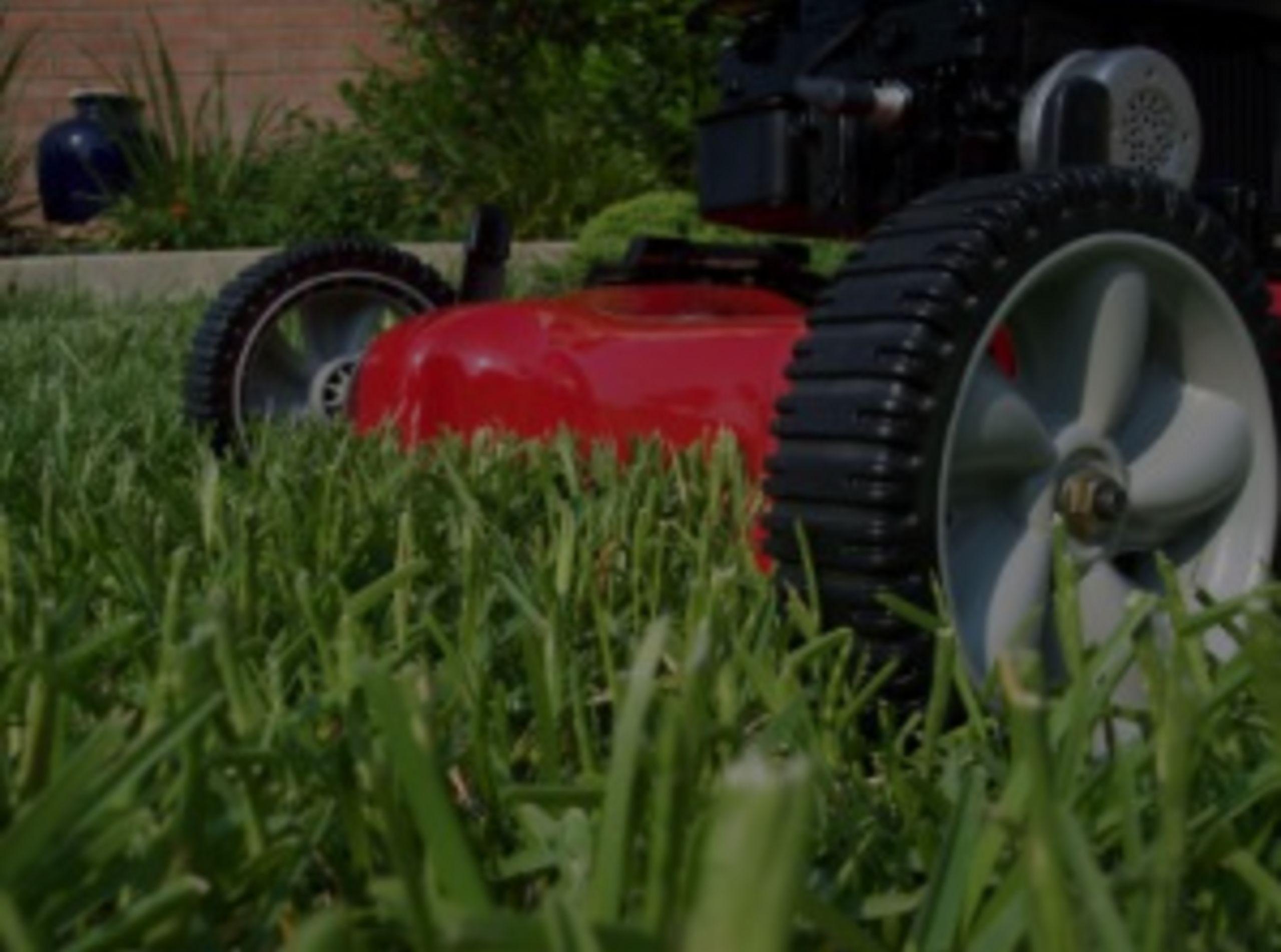 Yard Maintenance Tips