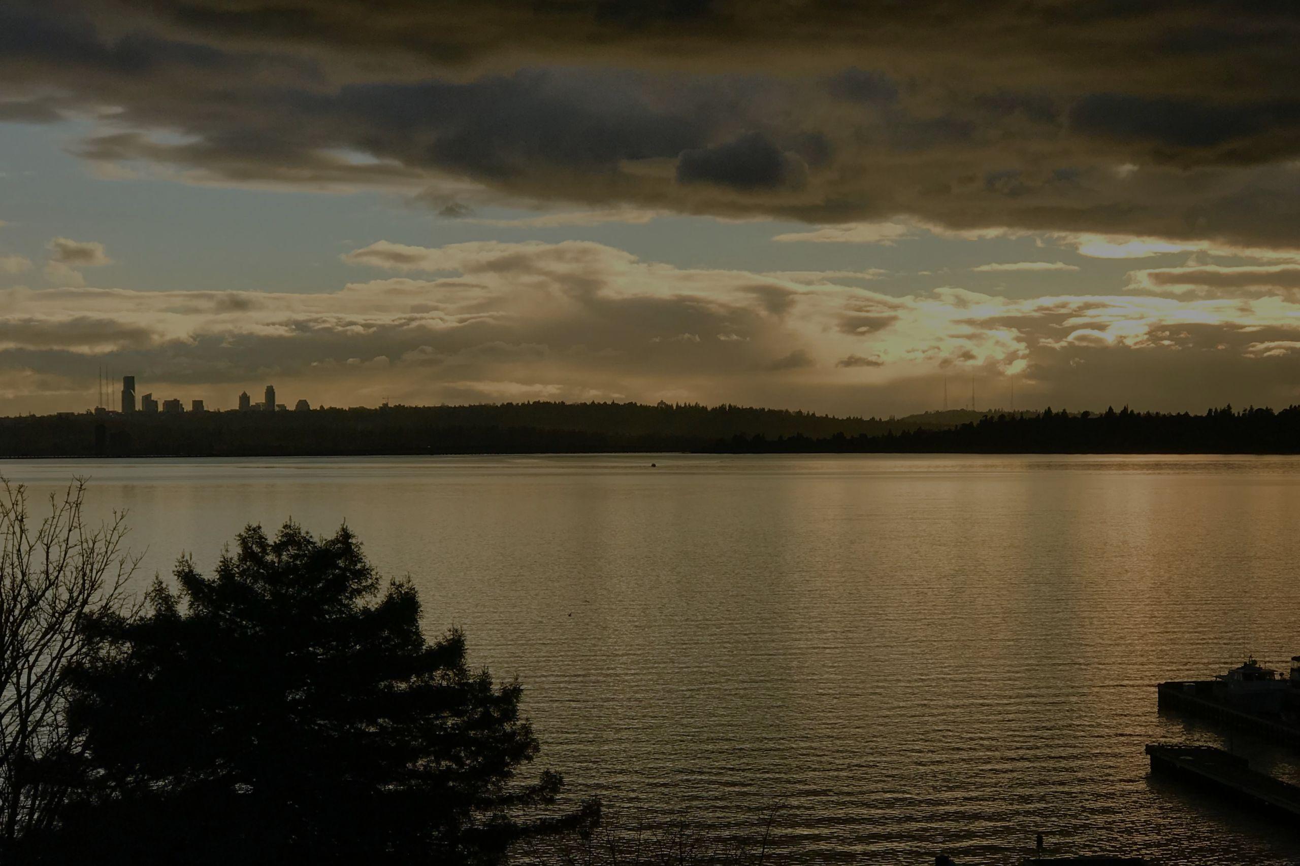 Kirkland Condo Lake Views