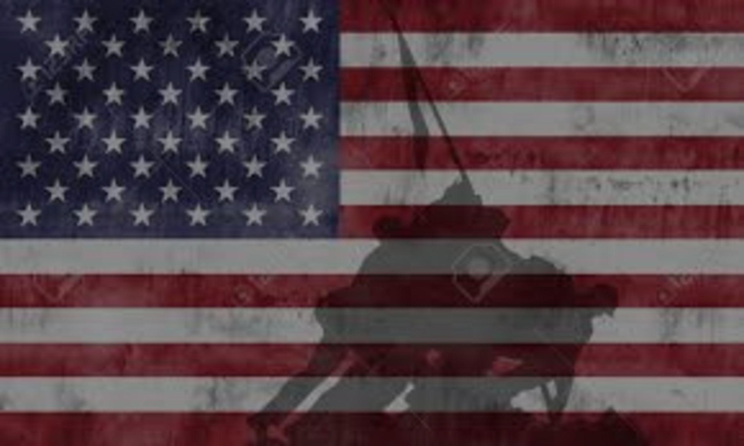 Happy Birthday USMC and Happy Veteran's Day