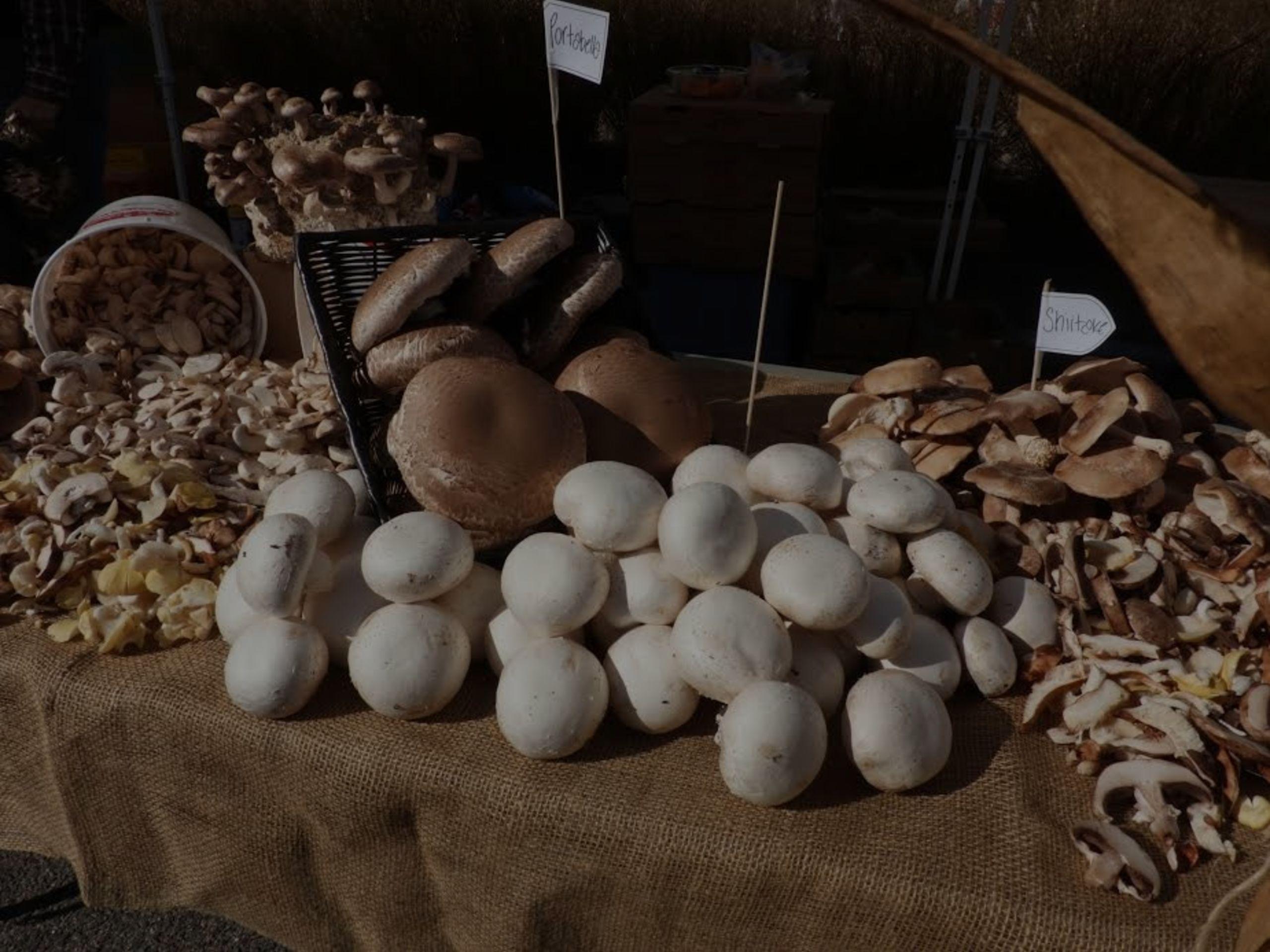 Kennett Square Mushroom Festival