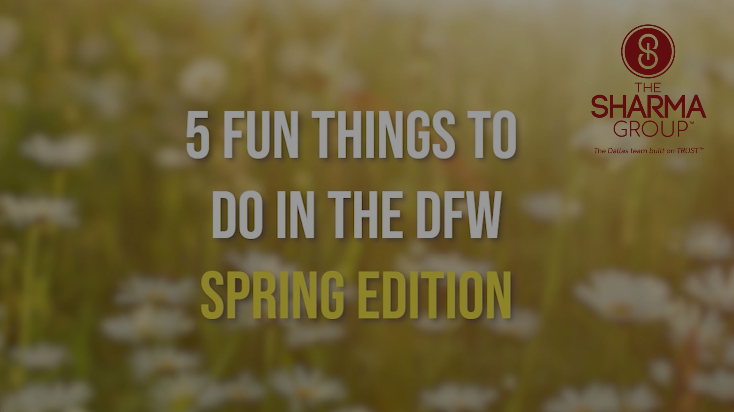 5 Things to do in DFW for Spring!