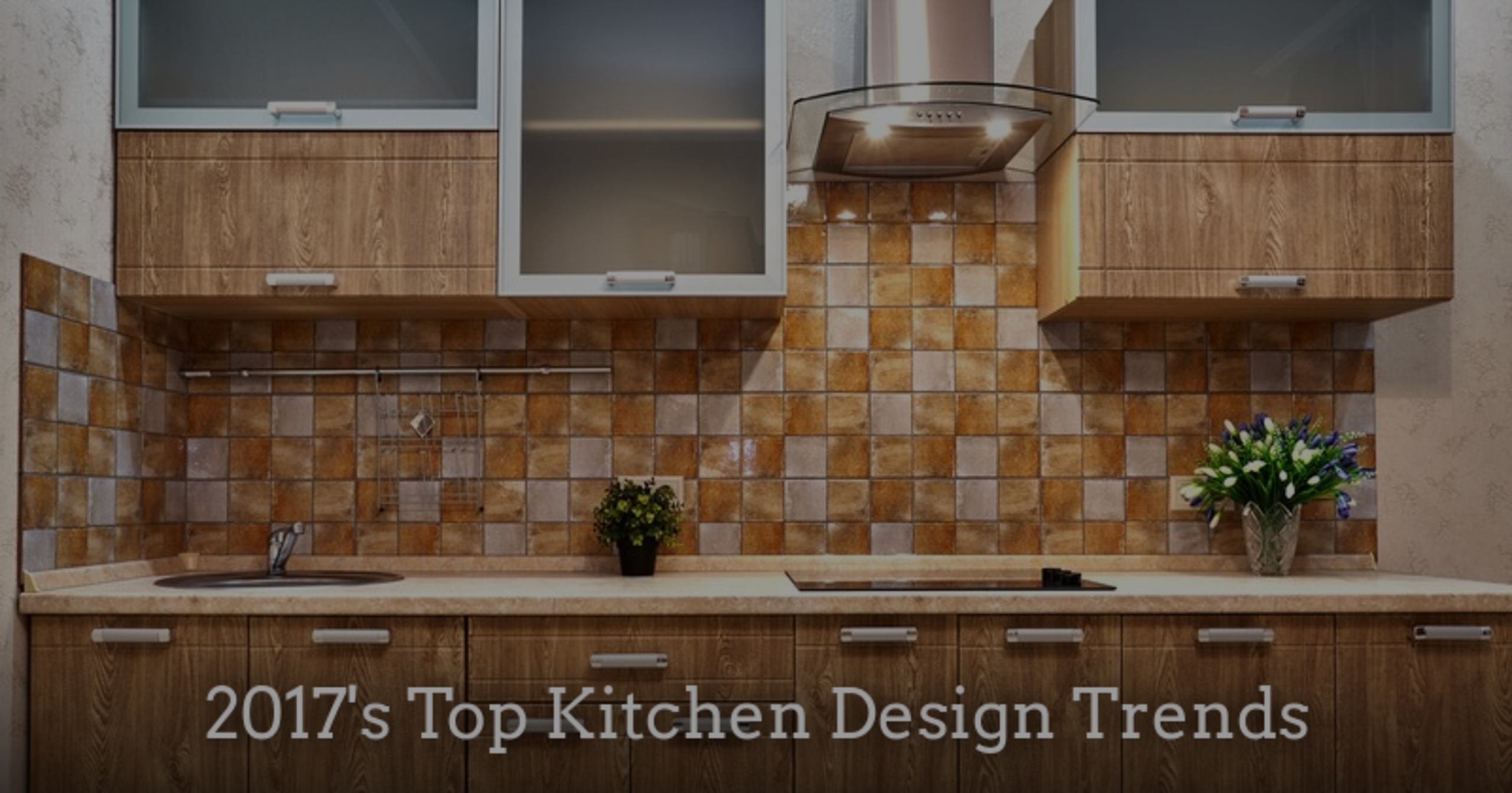 2017's Top Kitchen Design Trends