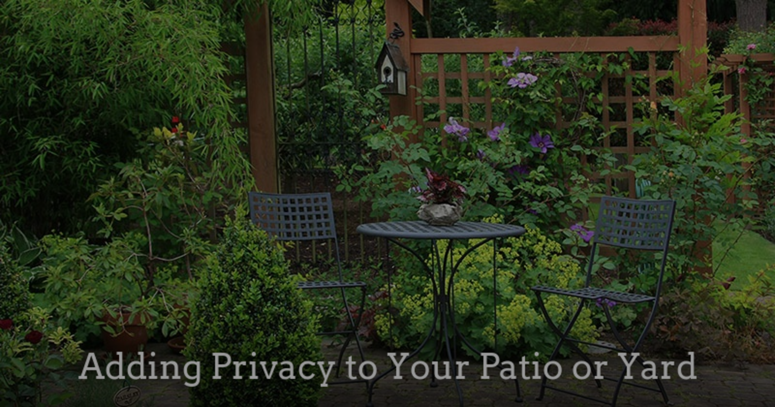 Adding Privacy to your Patio or Yard