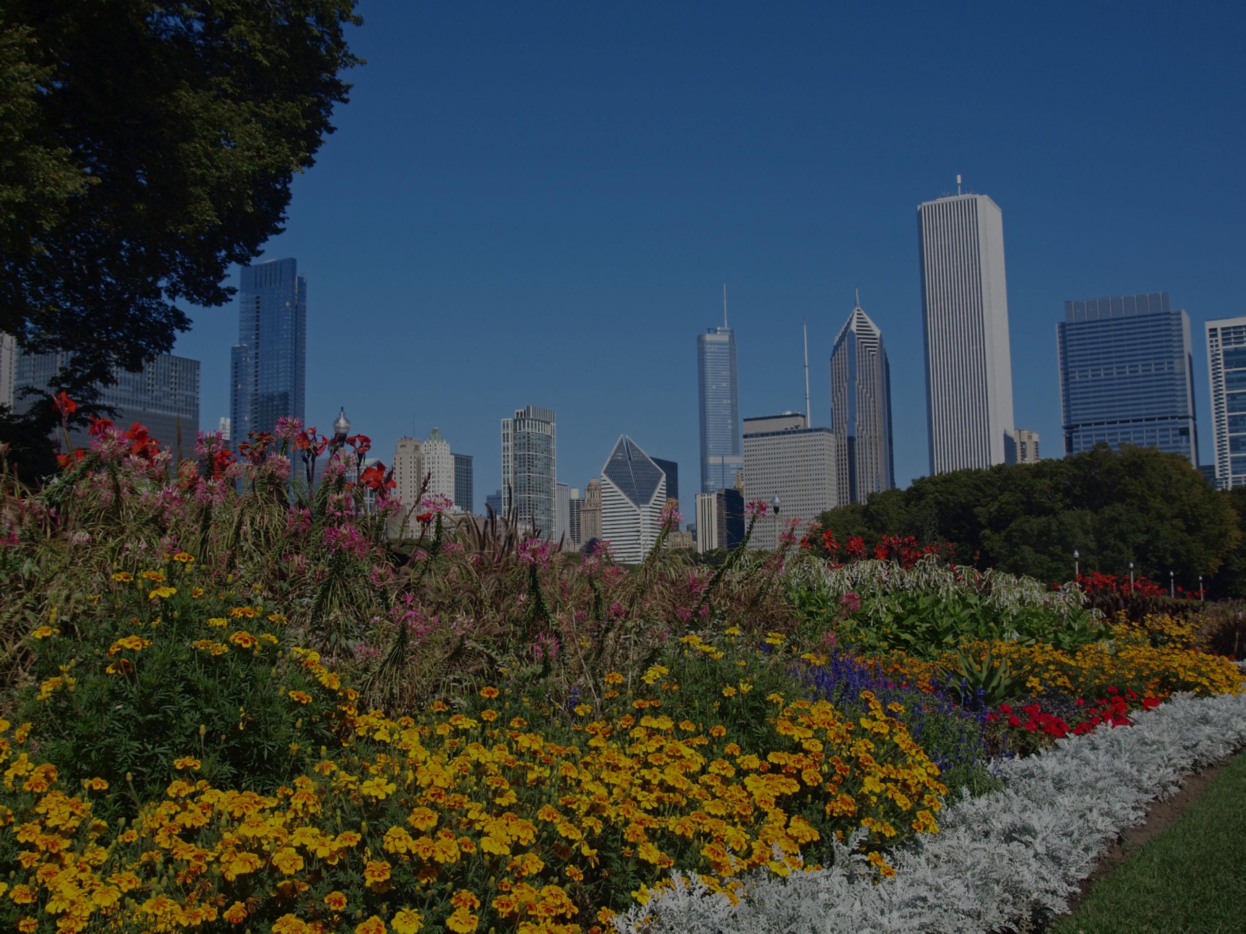 Chicago Real Estate Market Update For September 2013
