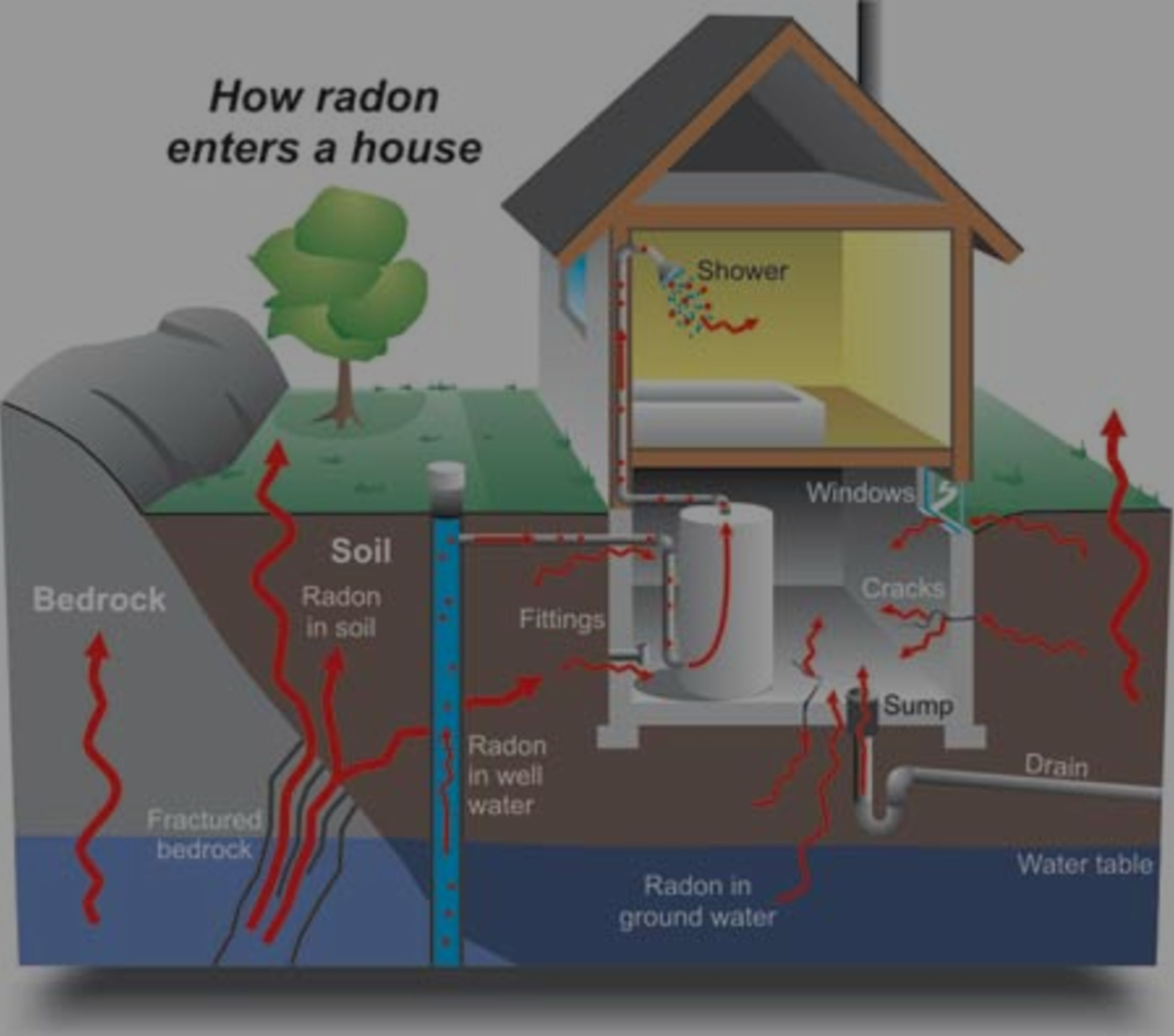 Im Buying a Home. Should I Test for Radon?