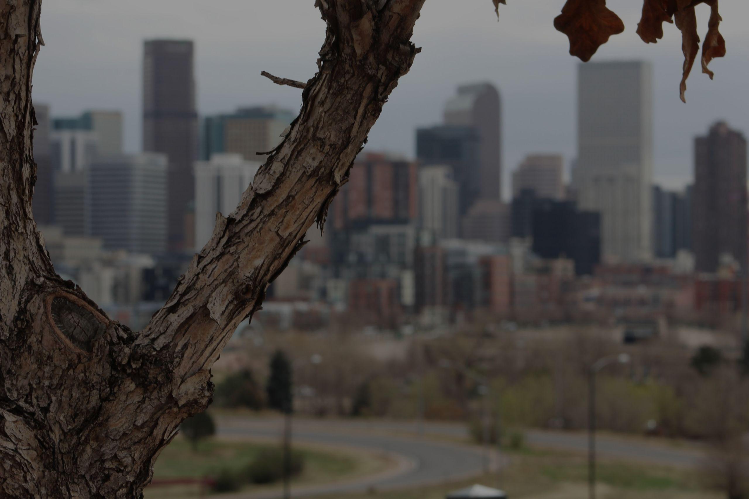 Denver Retail Real Estate Market Report