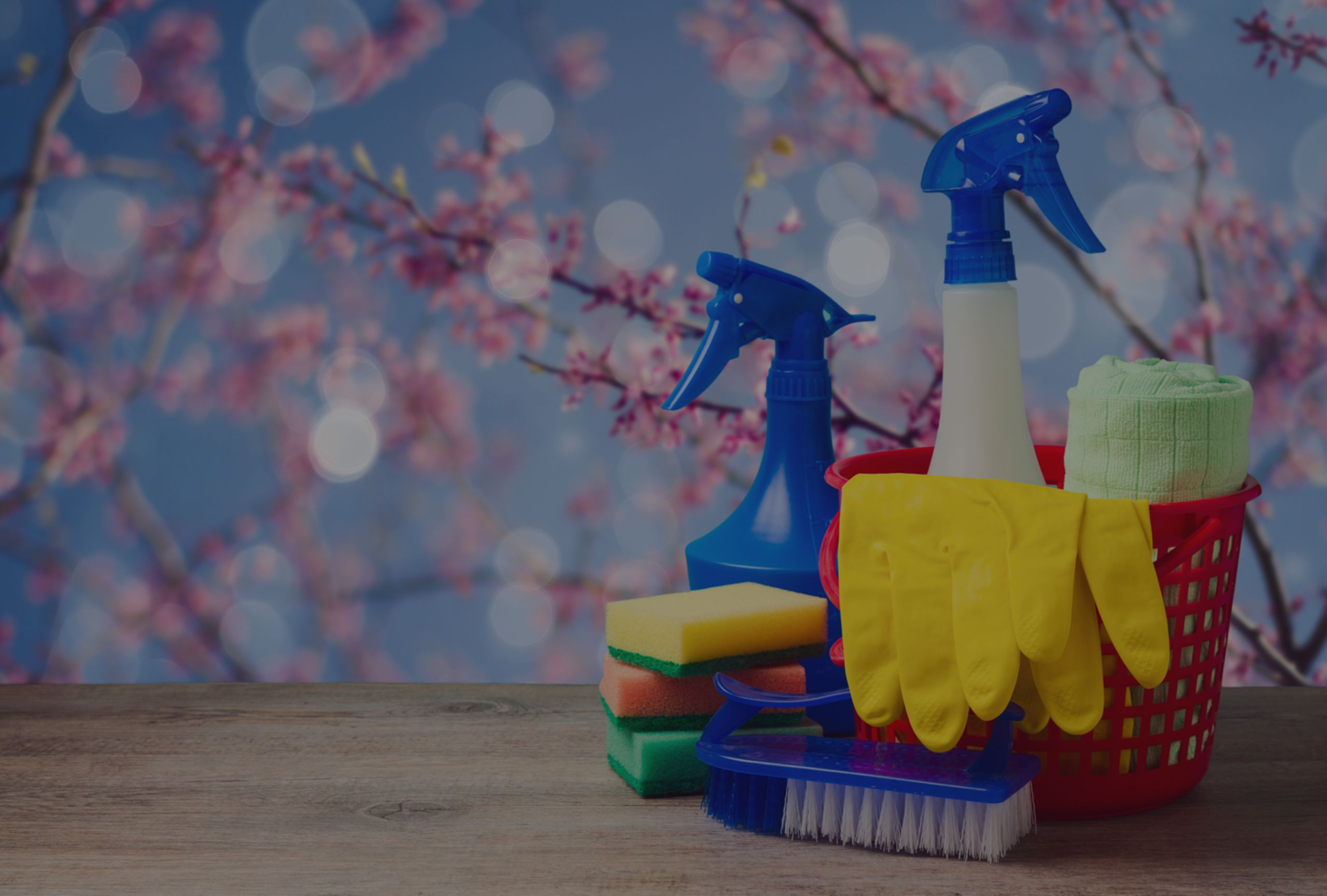 Spring Check-Up: Follow these 5 simple tips for a Healthy Home!
