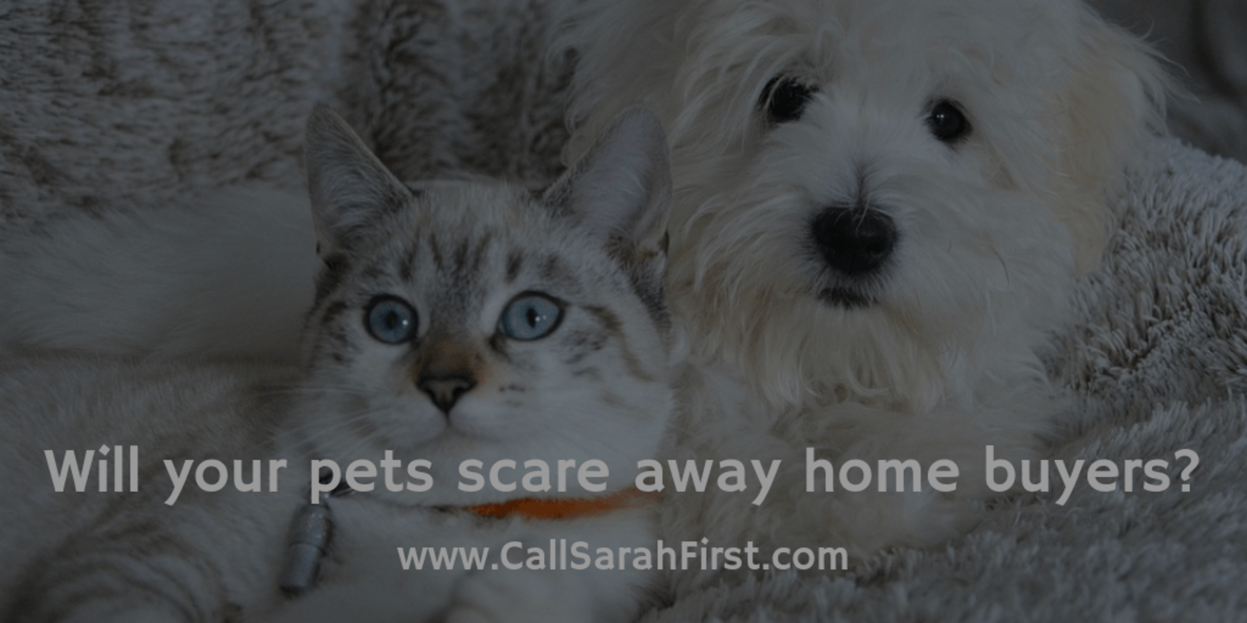 Do pets scare buyers away?