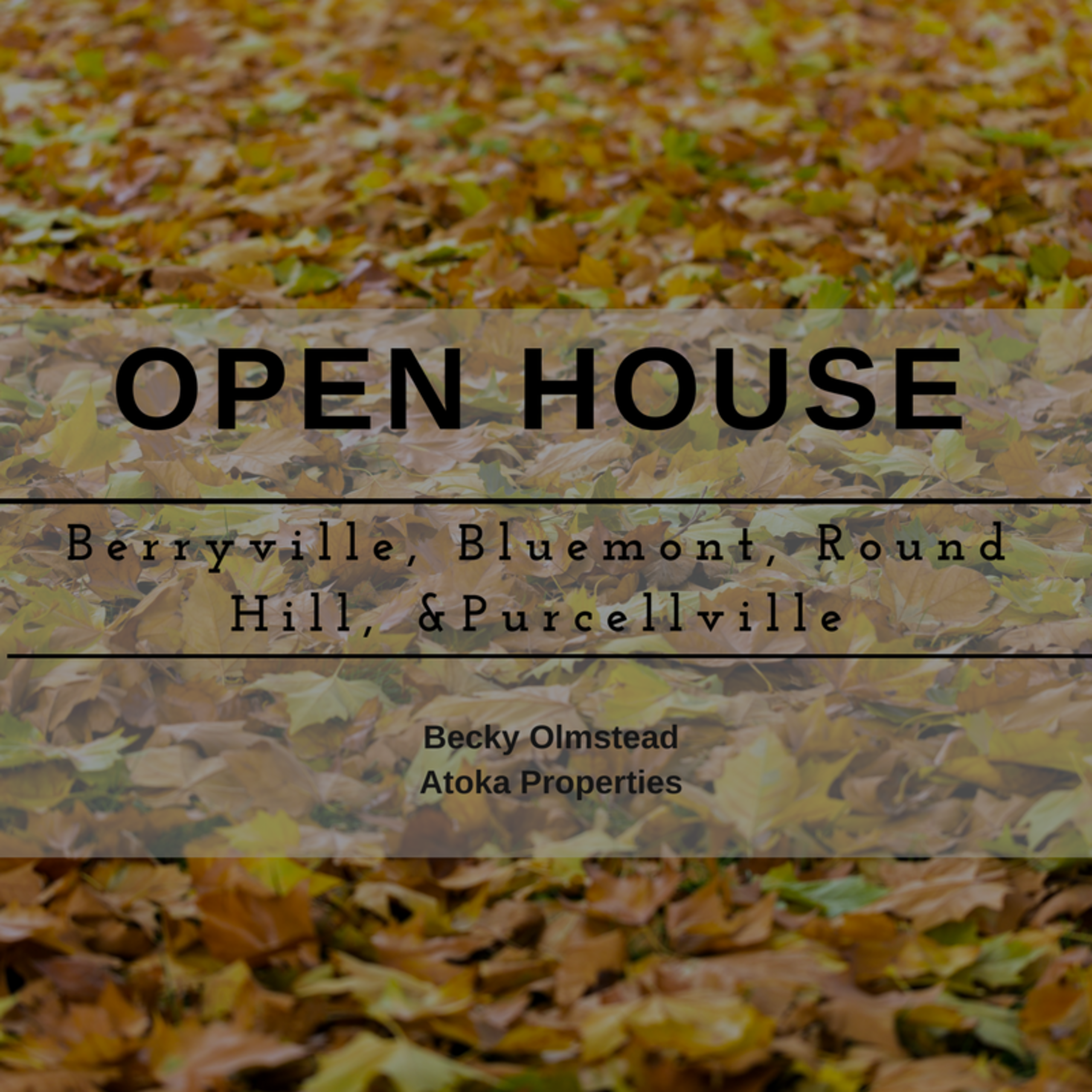 November 18 and 19 Open House