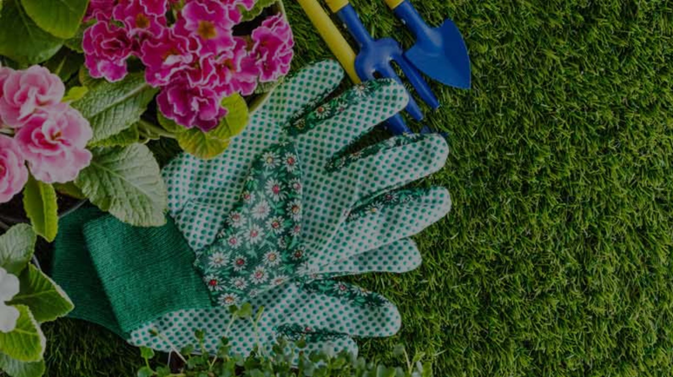 A Seasonal Guide: Spring Landscaping