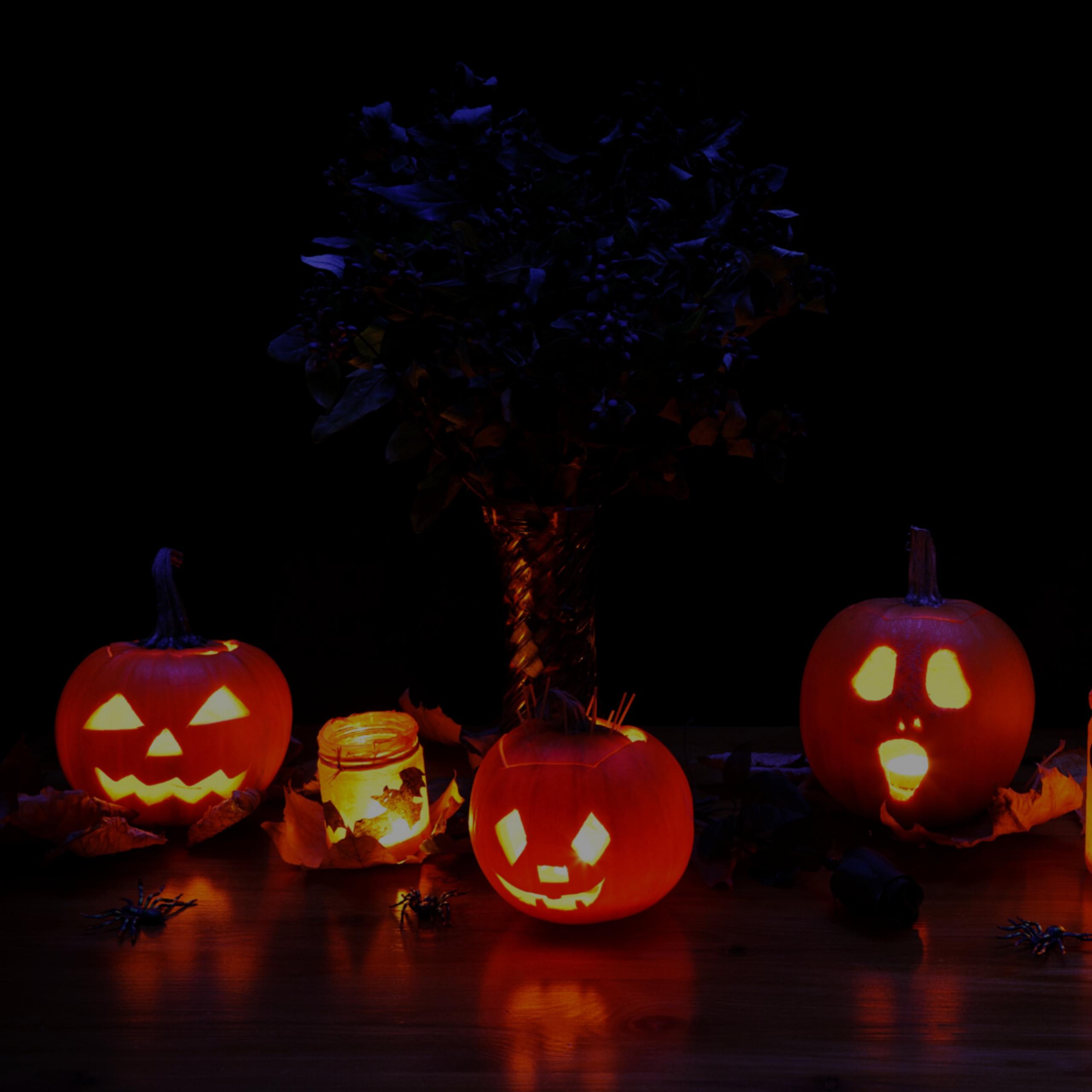 Cobb | Marietta Weekend Rundown – Halloween Edition