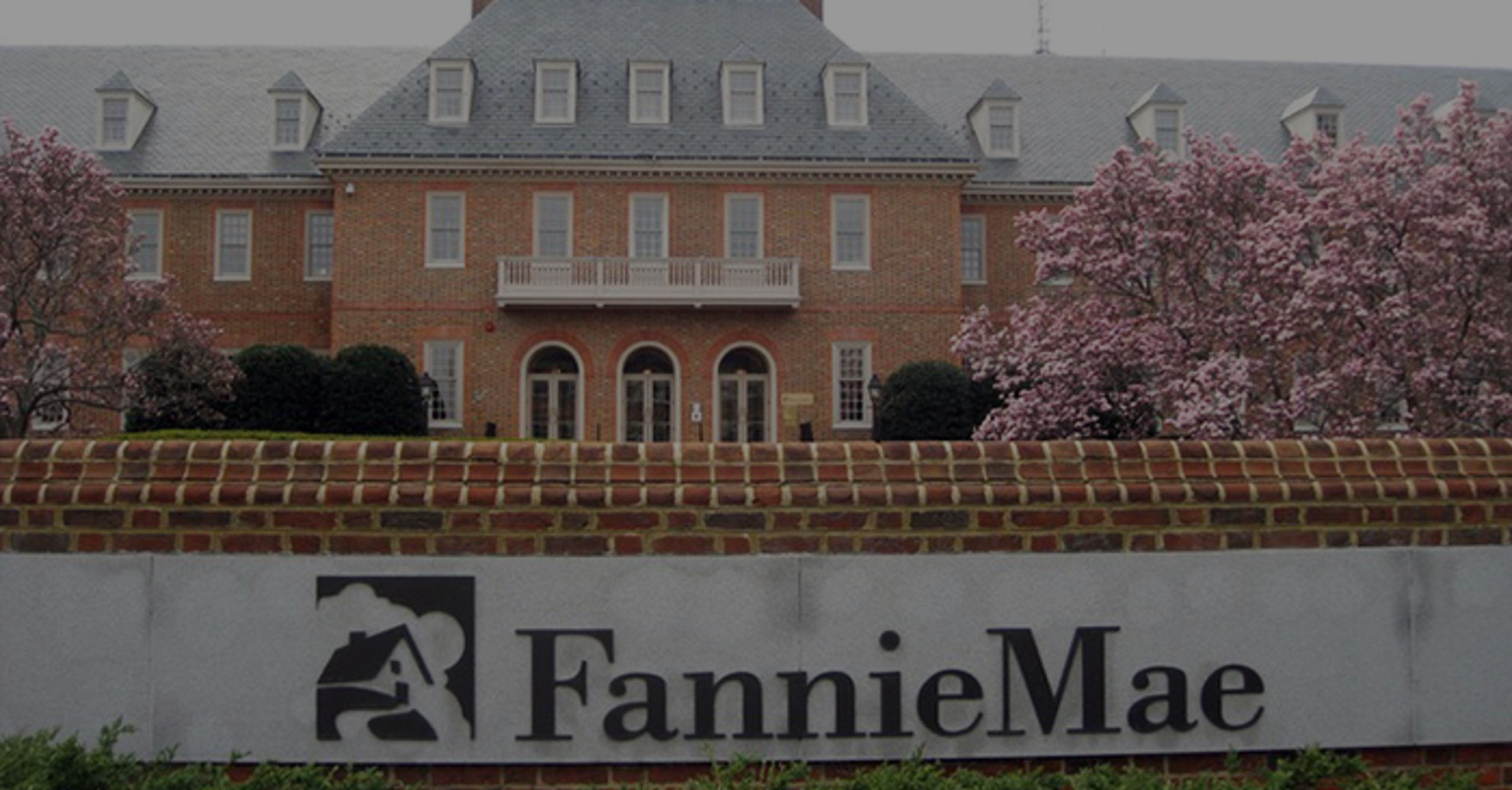 What Or Who Are Fannie And Freddie, Anyway?