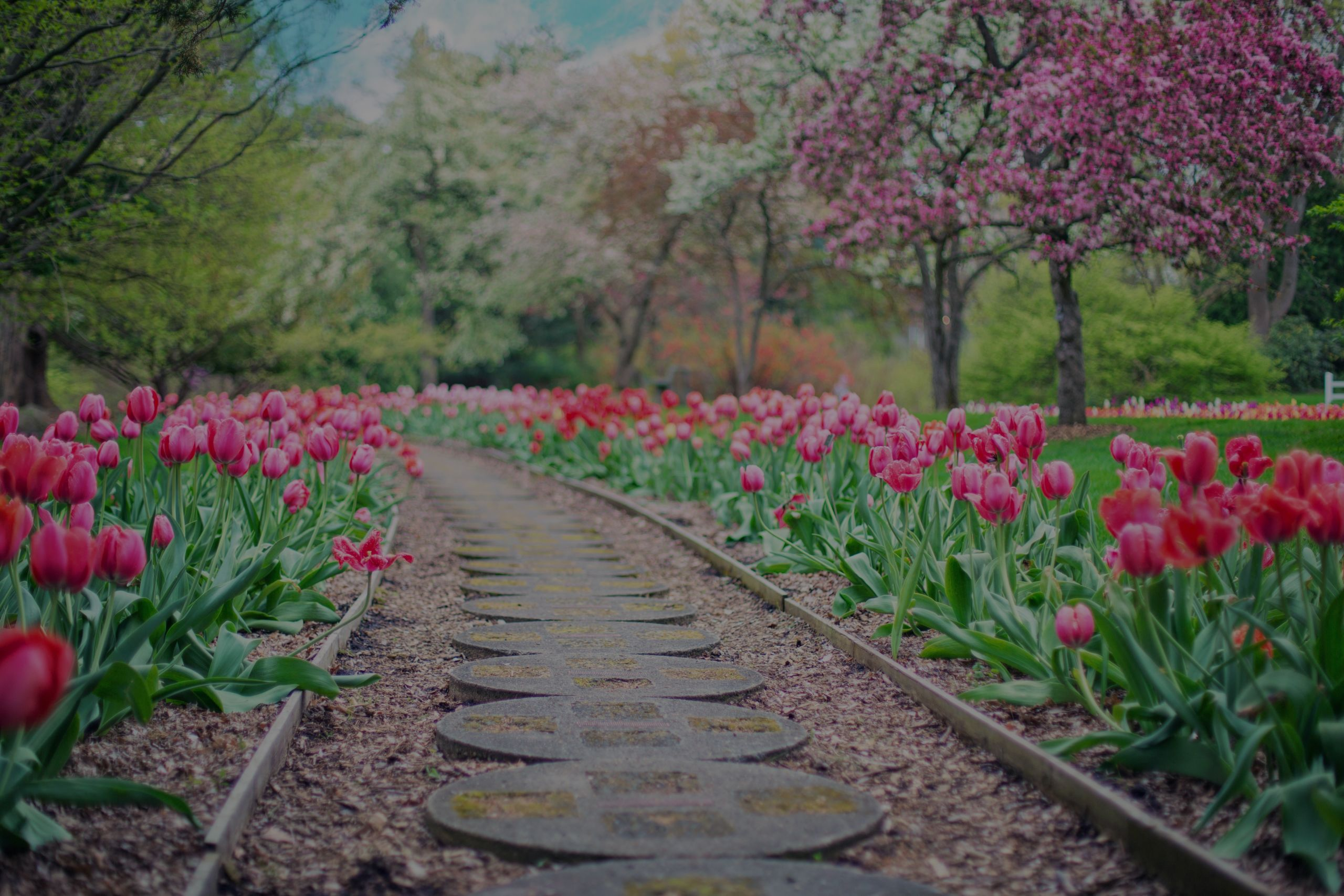 Landscaping Return on Investment- Source: National Association of Realtors (2018)