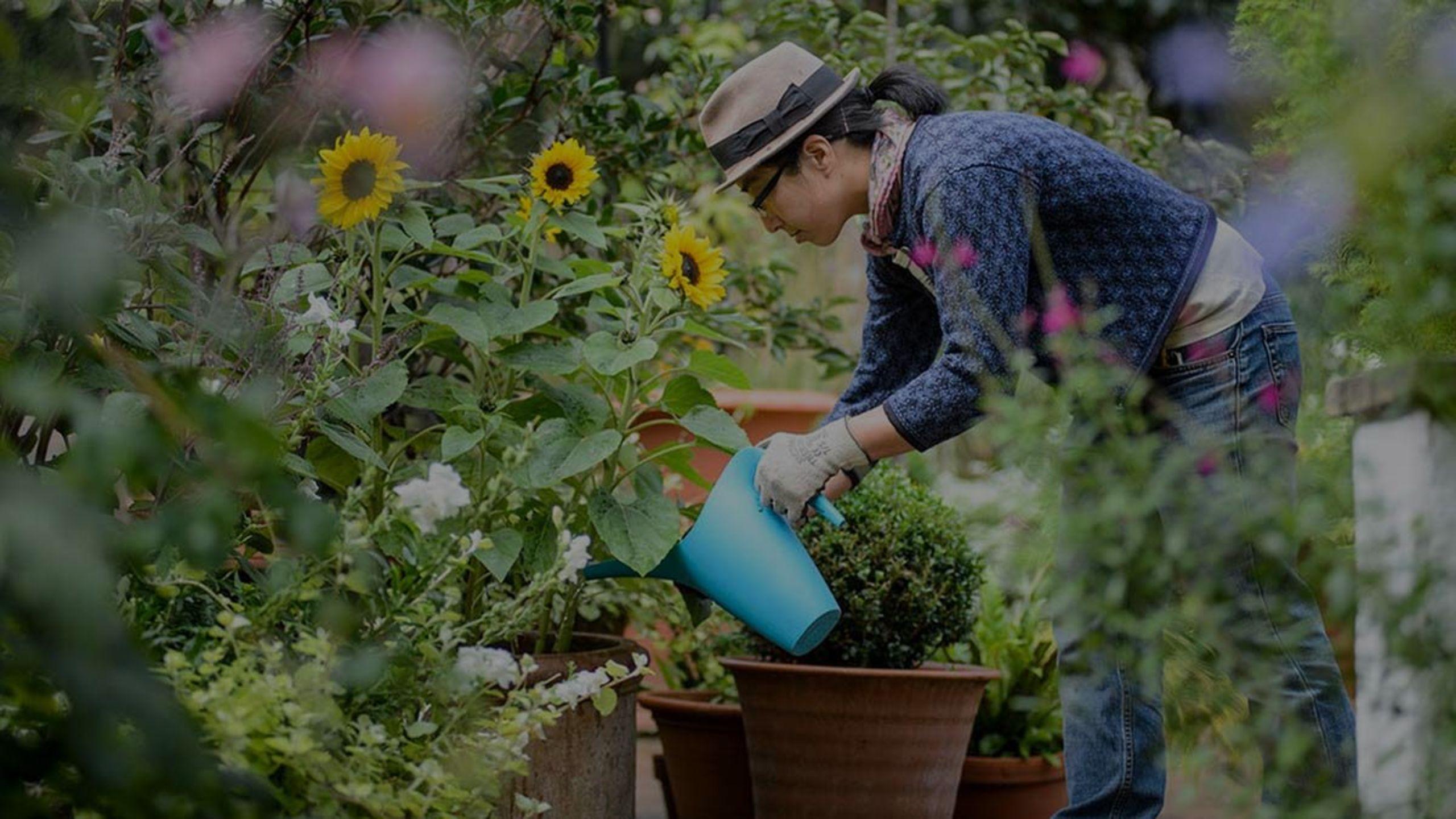5 Ways to Make Gardening Easier in the Lehigh Valley