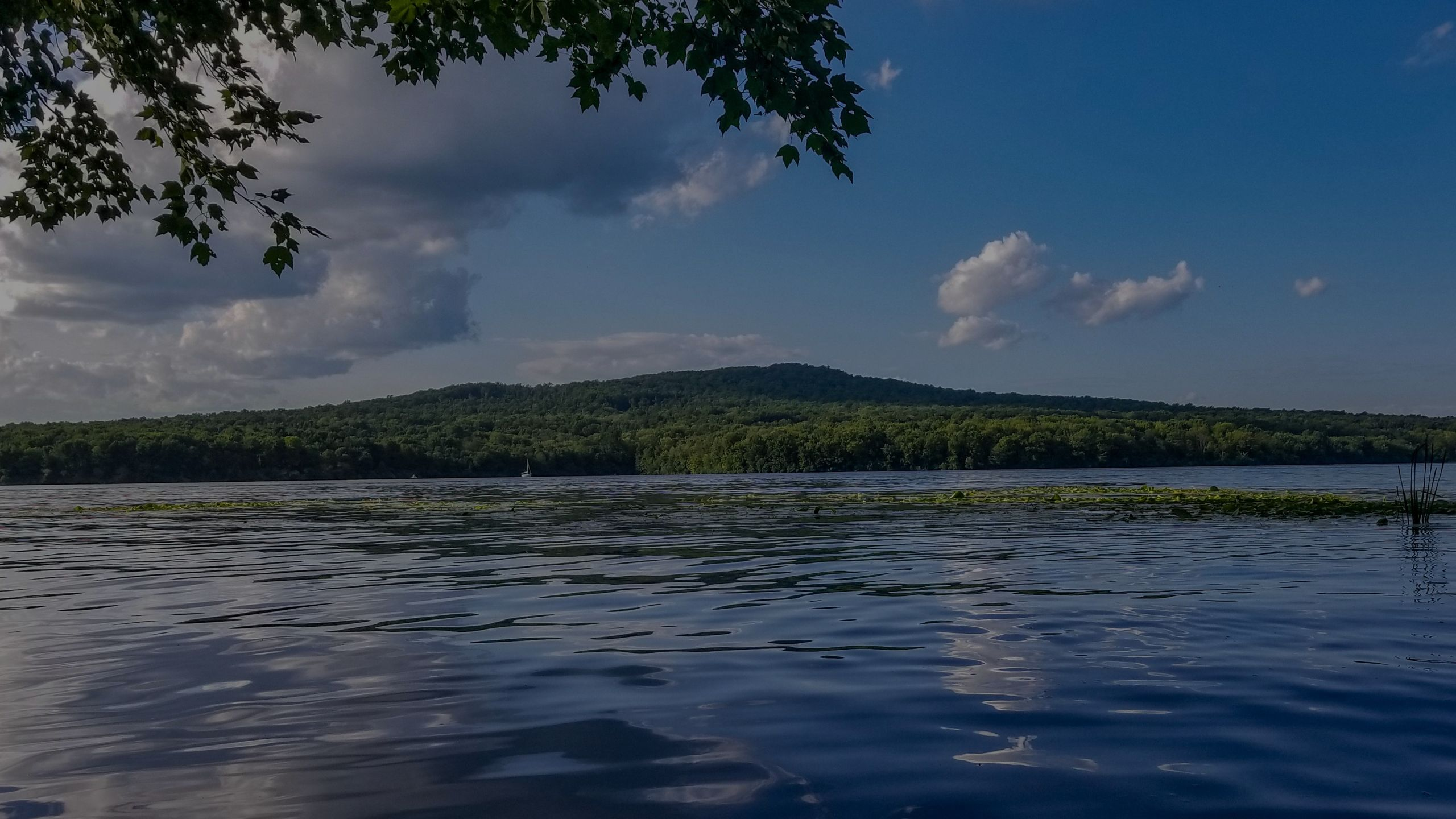 Beat the Heat: Top 5 Lehigh Valley Area Lakes for Swimming