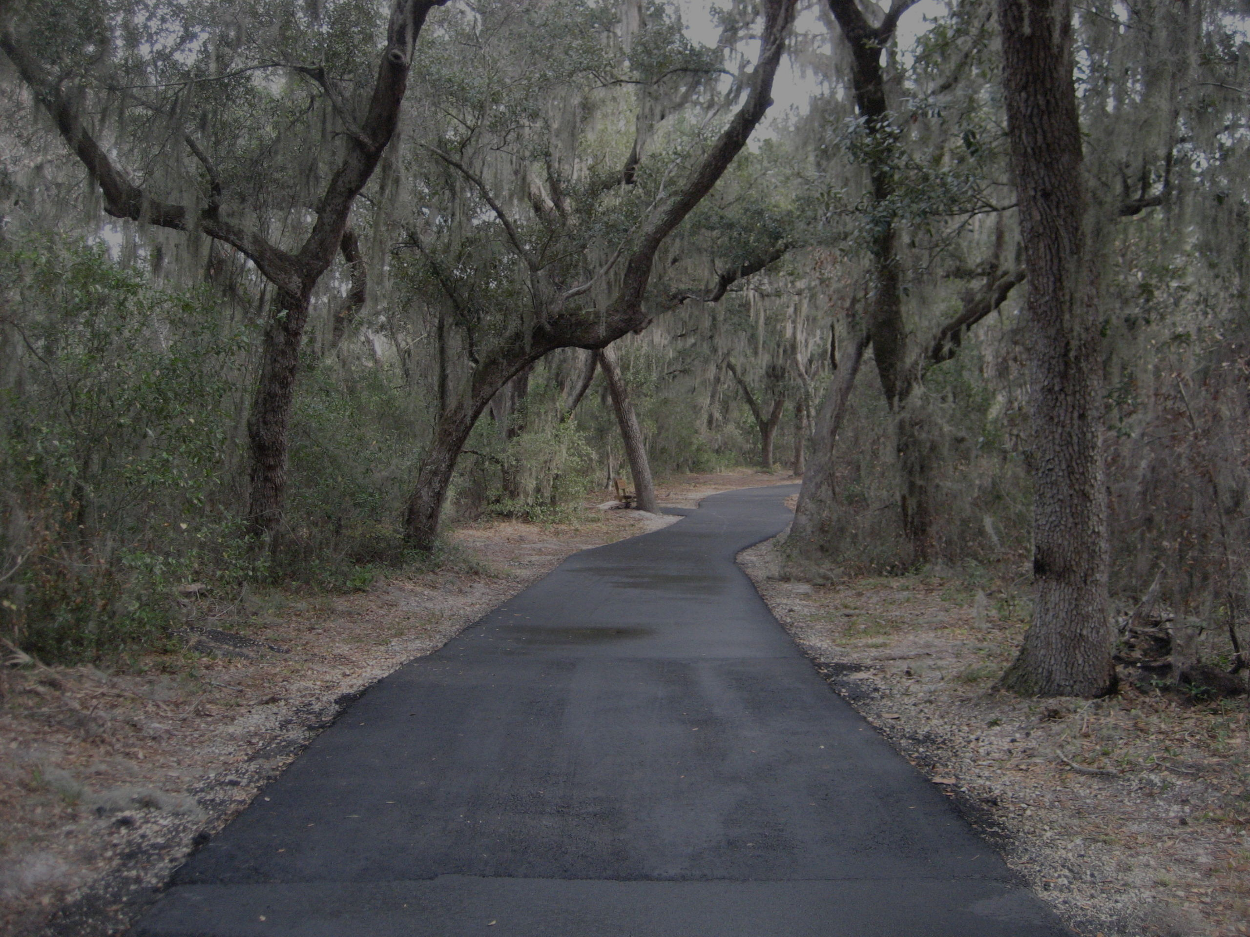 Natural Resources in Gulf Shores and Orange Beach
