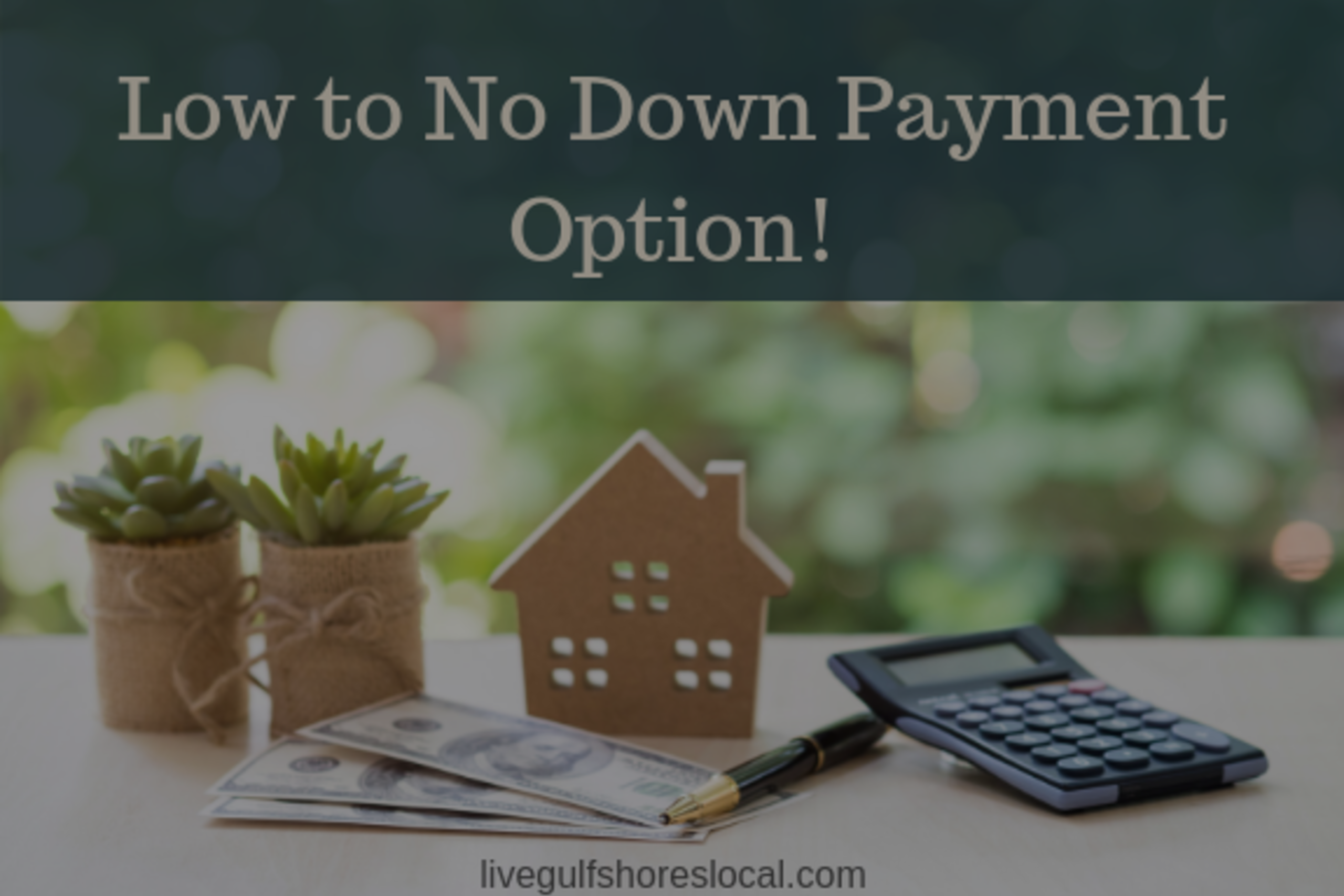 Low to No Down Payment Option