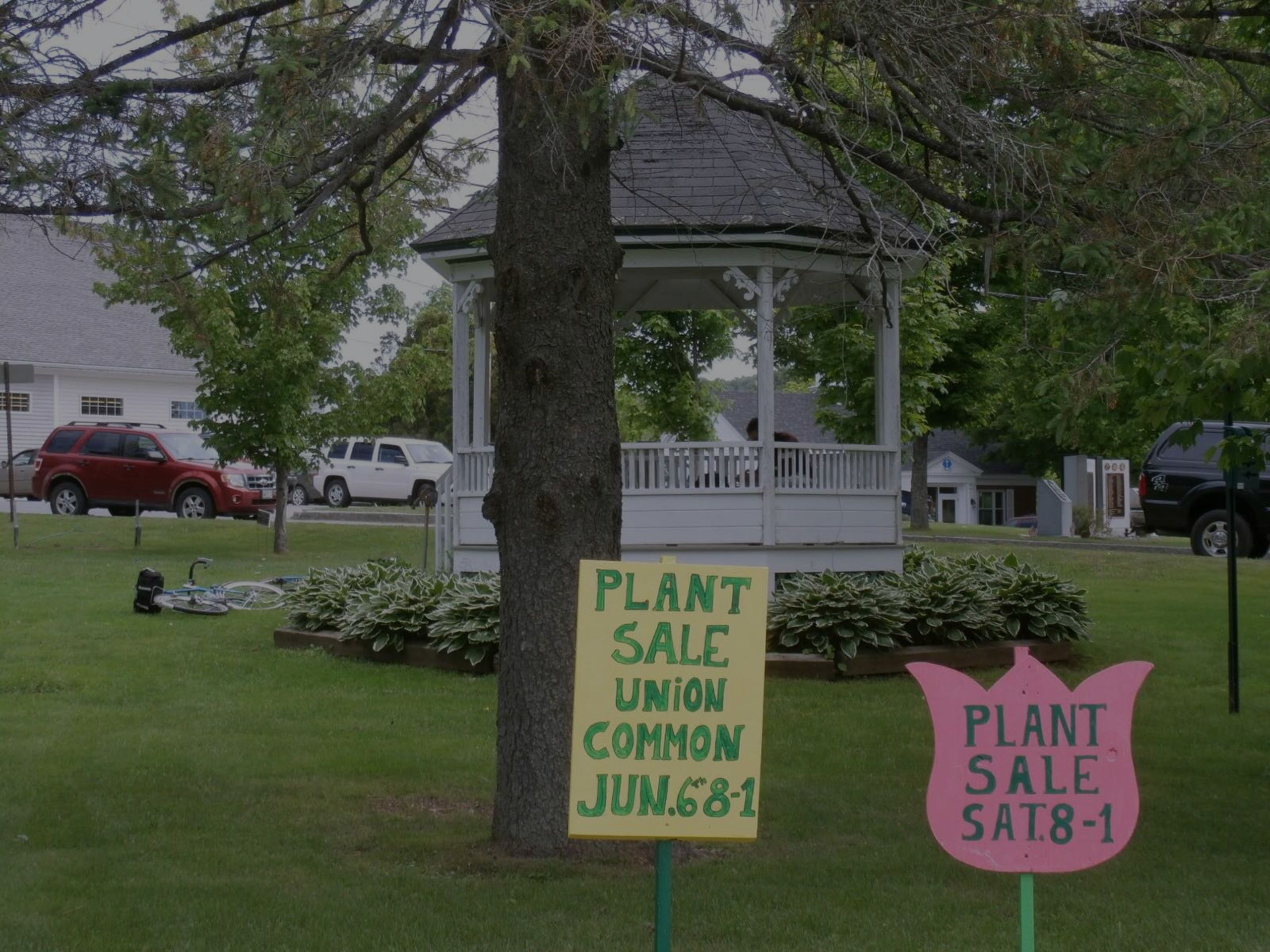 Plant Sale: On the Common