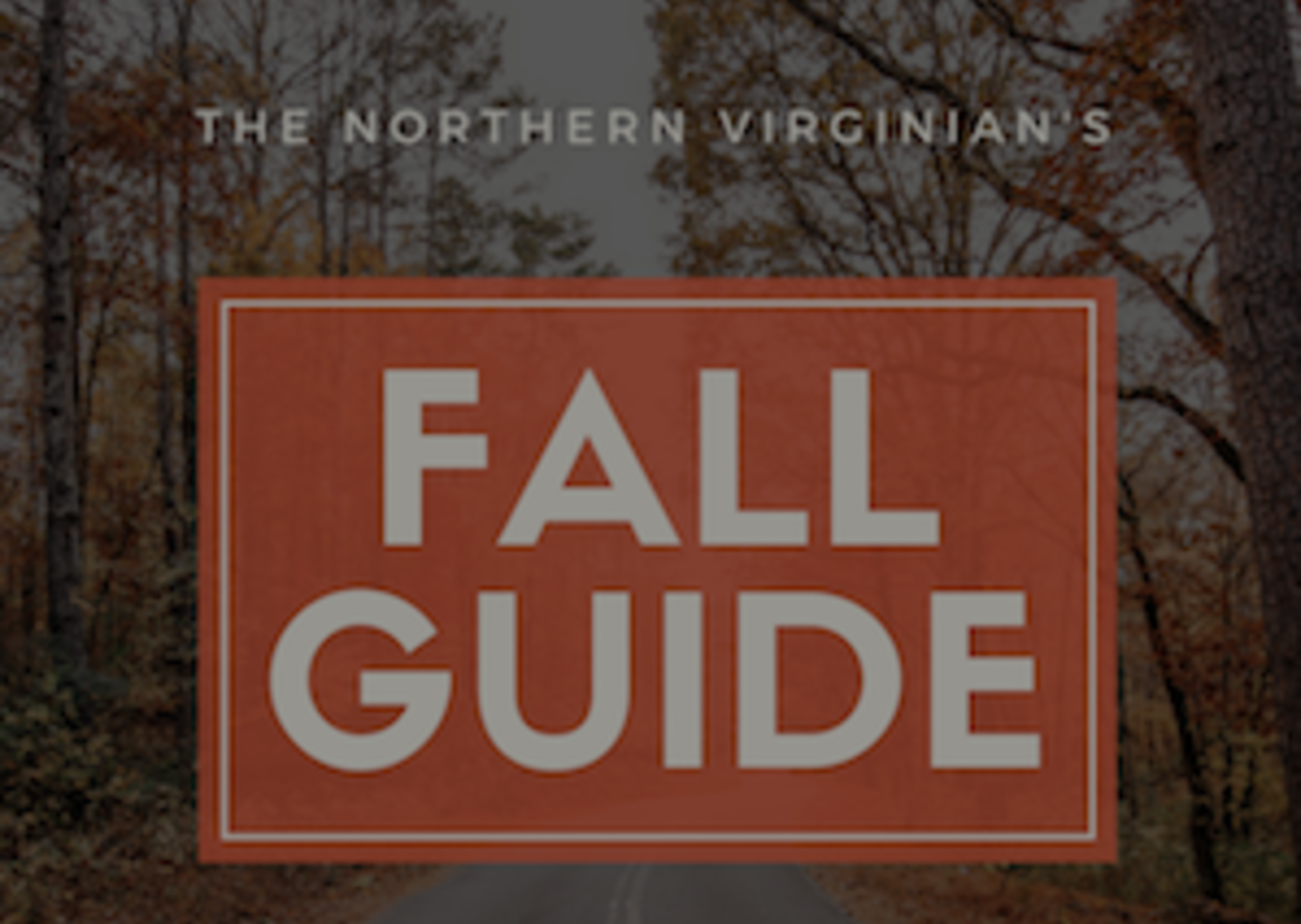 The Northern Virginian's Guide to Fall