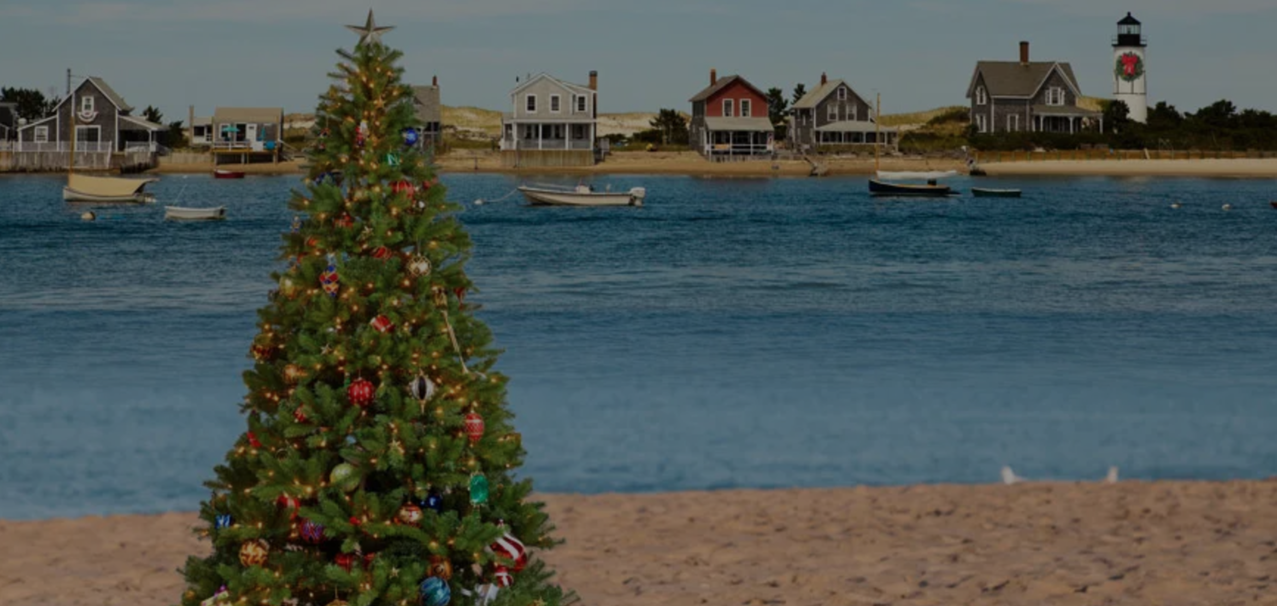 Our 2019 Cape Cod Christmas Picks