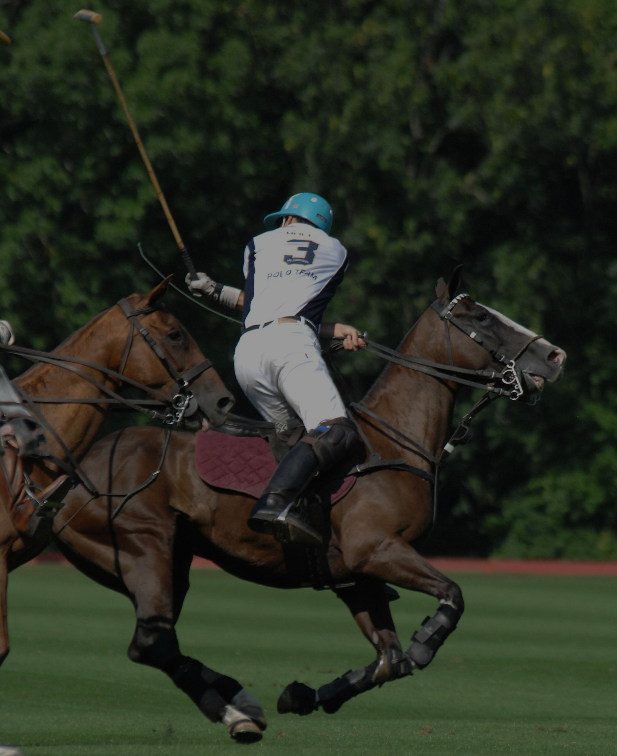 Okatie Rotary Polo for Charity