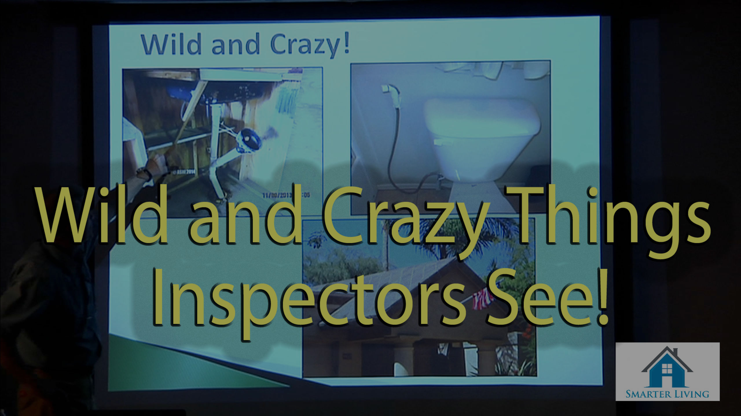 Wild and Crazy Things Inspectors See – Video