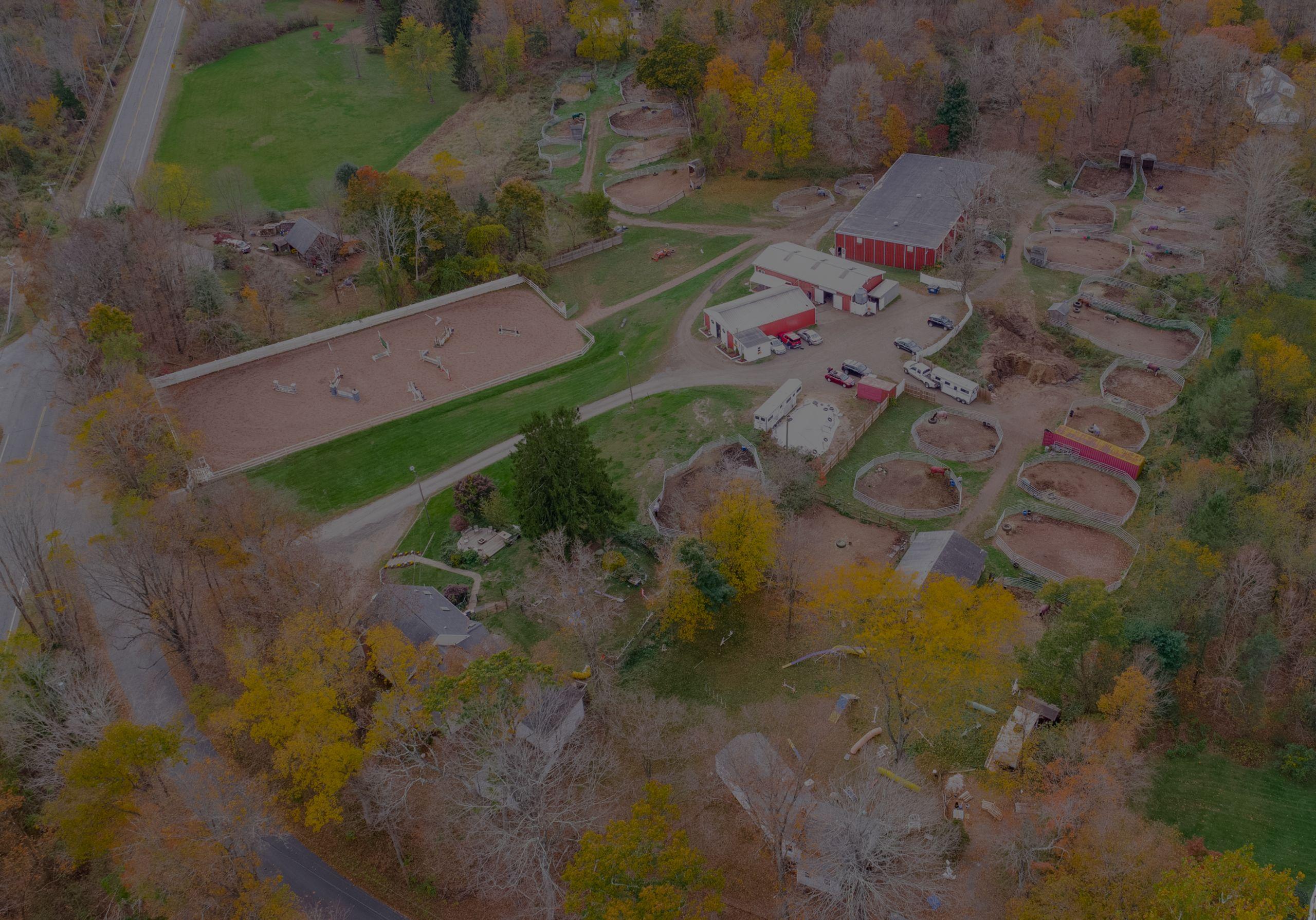 Movado Farms