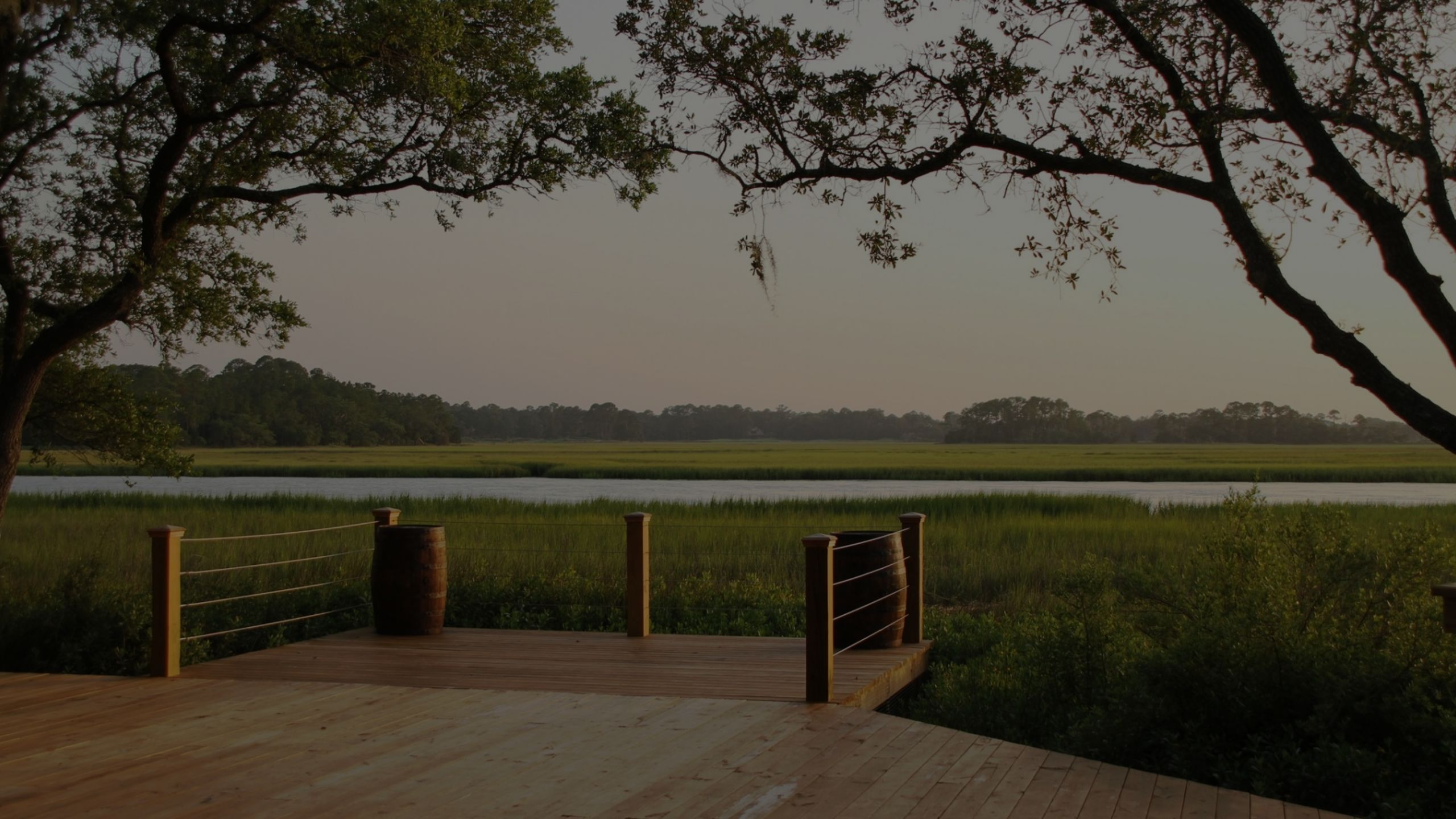 Explore the beauty of the Lowcountry