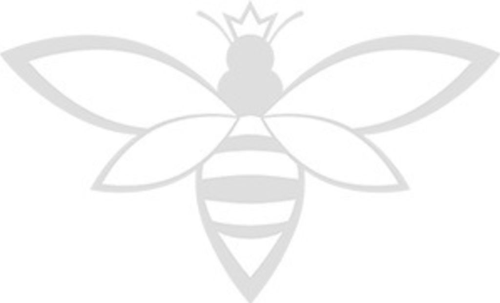 QUEEN BEE BROKERS | REAL ESTATE