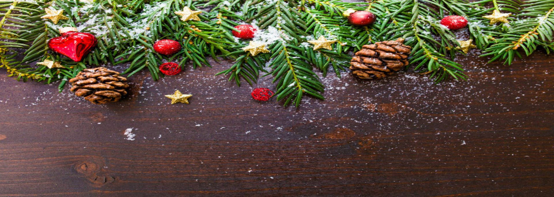 The SeaReal Team's Favorite Holiday Memories and Rituals