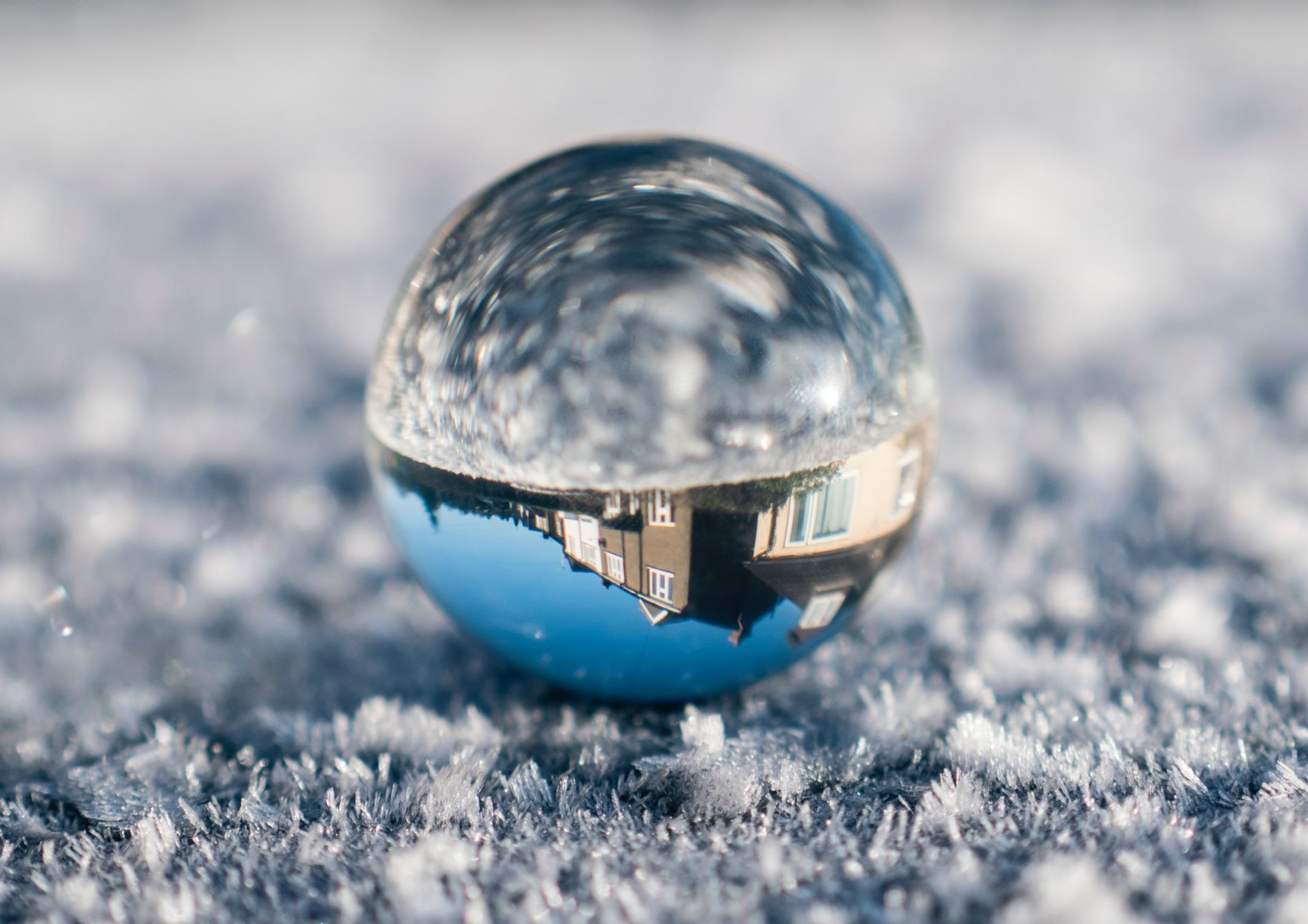 Denver Real Estate Predictions For 2019